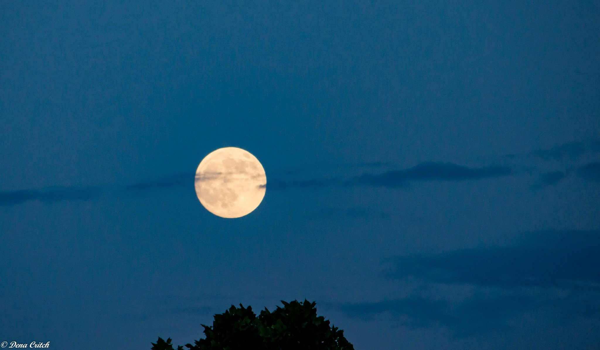 Moonlight & Clouds by dena.critch