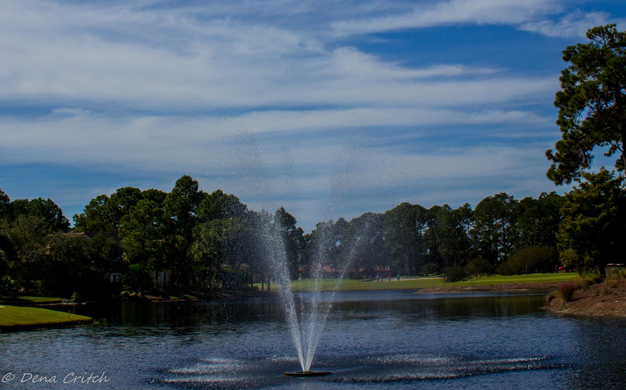 Fountain of Joy by dena.critch