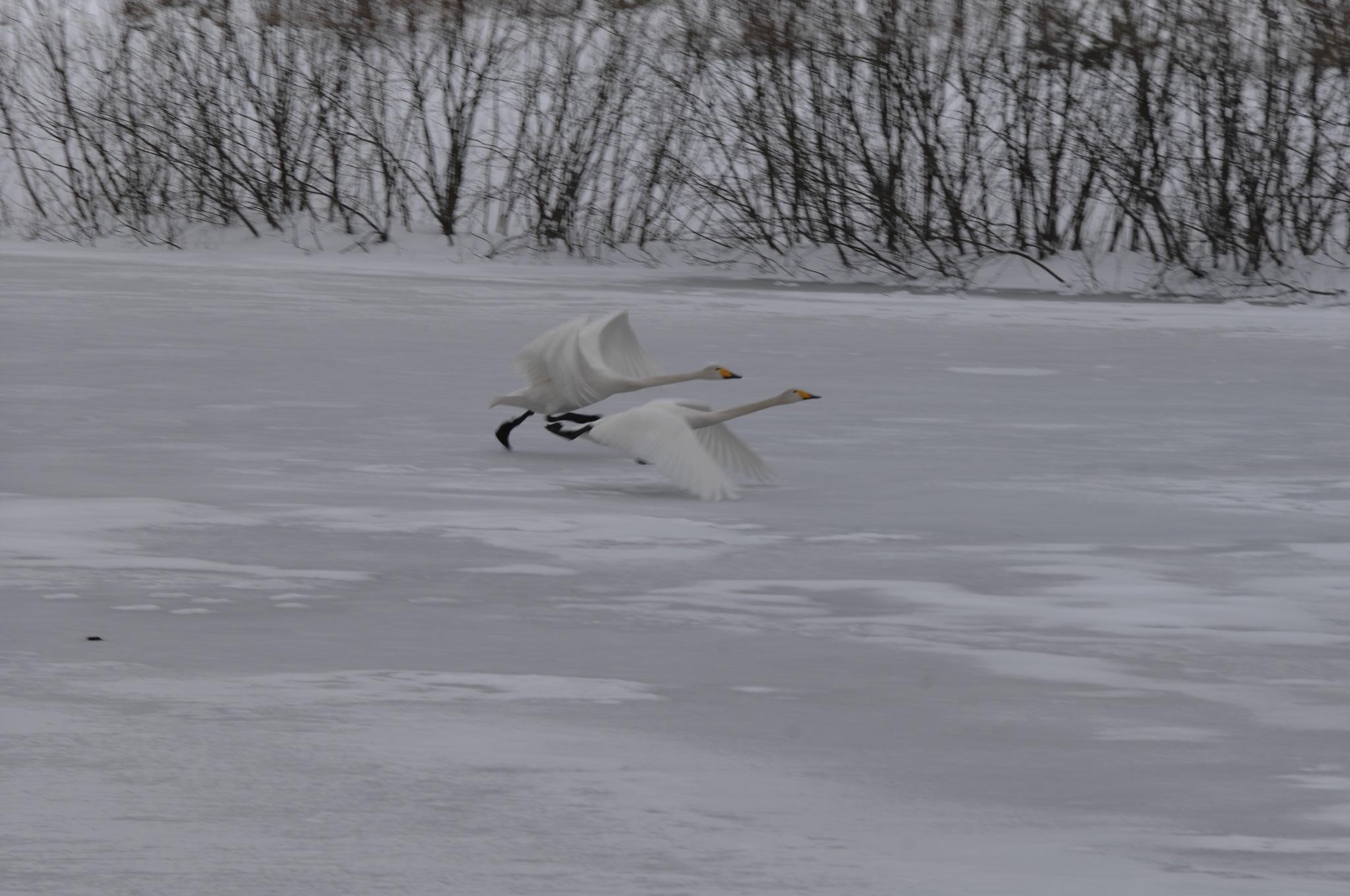 Take off by Lars R
