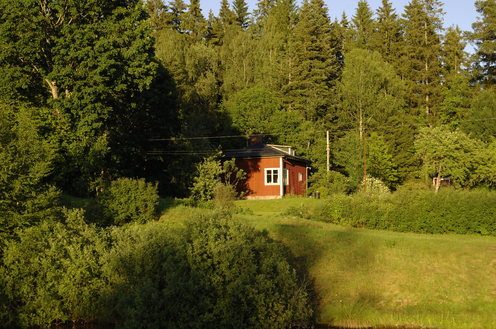 House in the forest by Lars R