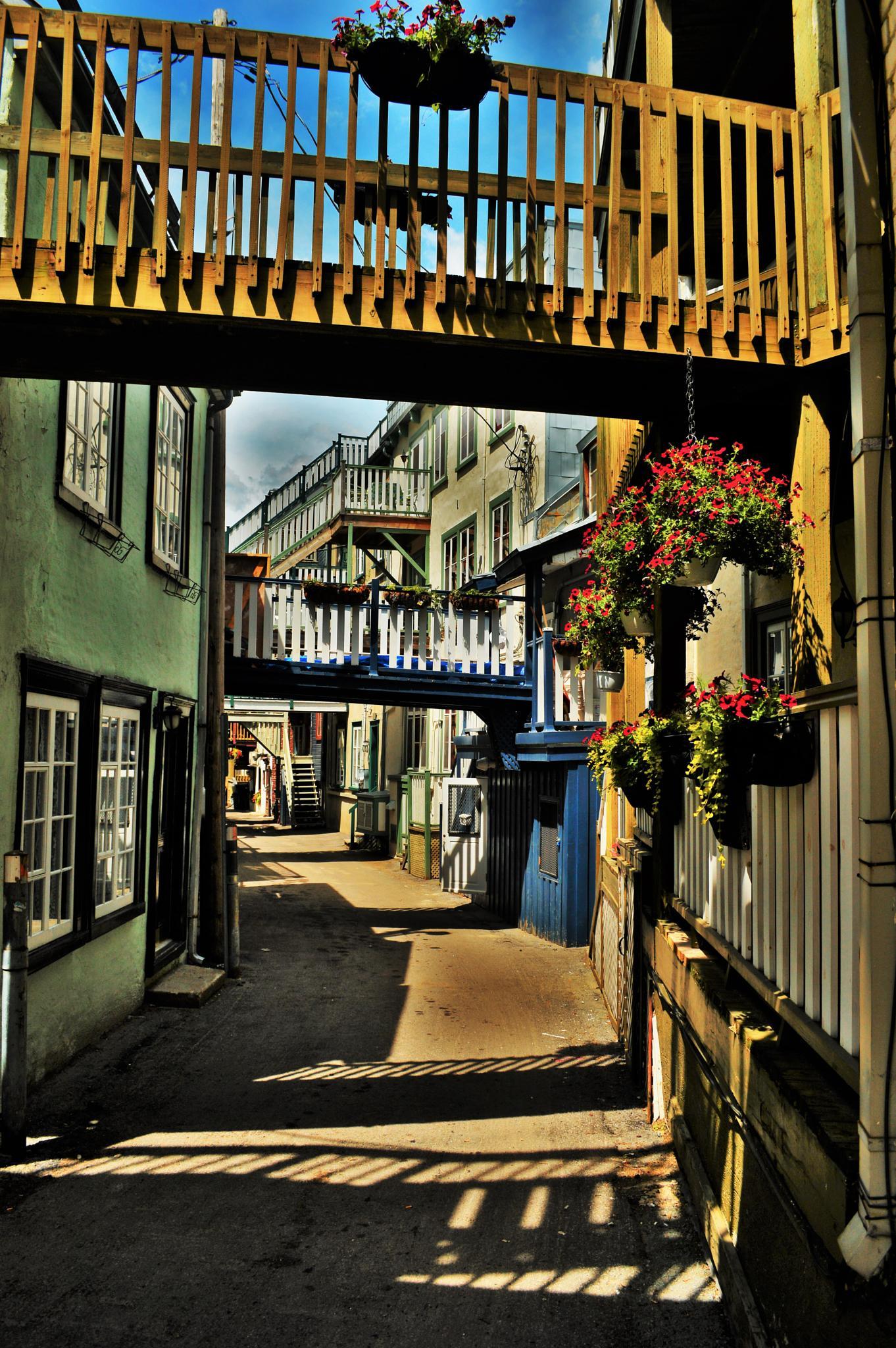Rue Sous le Cap by vasseuromain