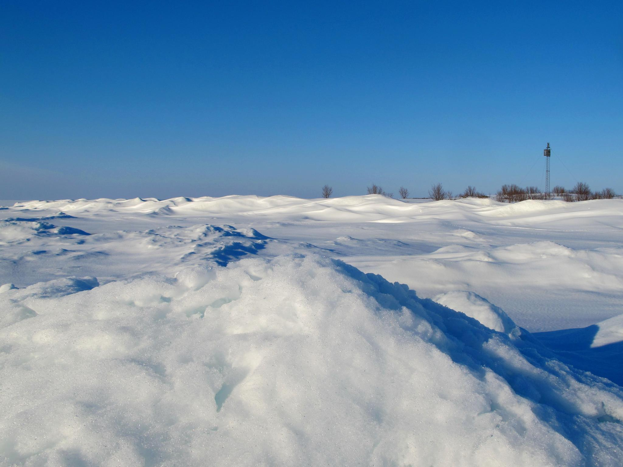 "65°37'0.89""N  23°37'42.10""O. Gunnaren. by L.Fredrik.B"