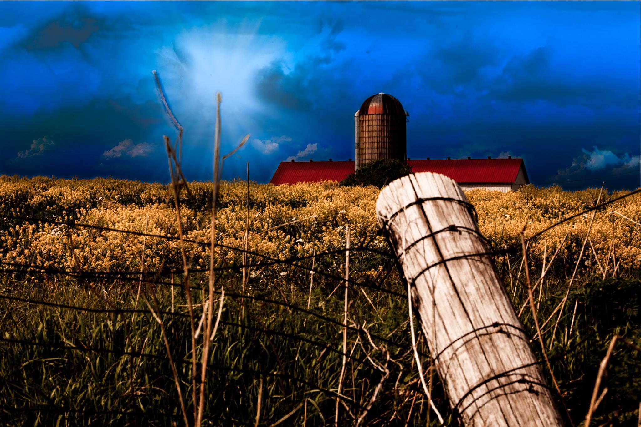 Sunrise Barn by Gene Linzy