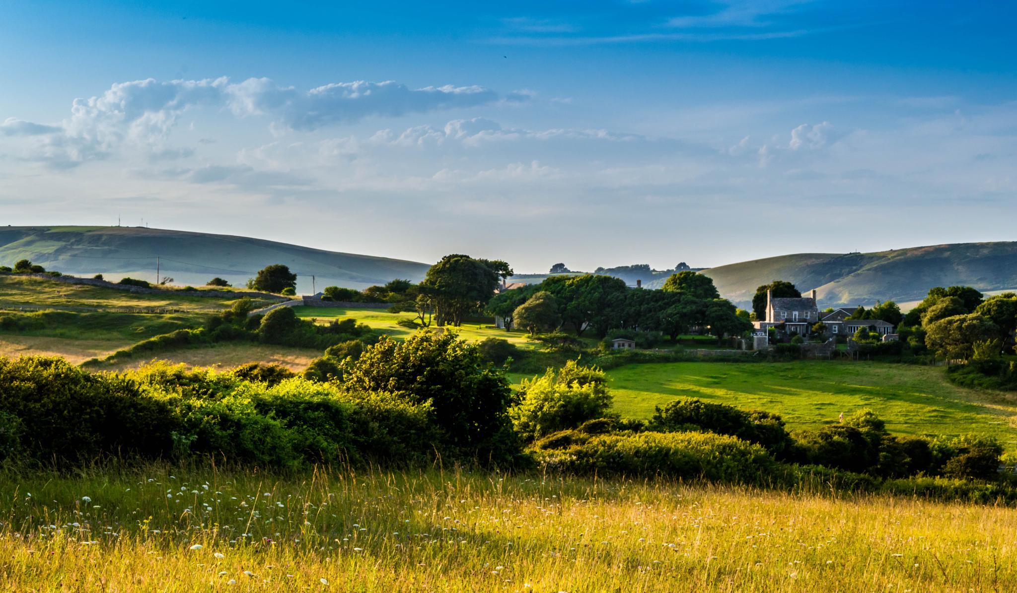 Photo in Landscape #purbeck #dorset