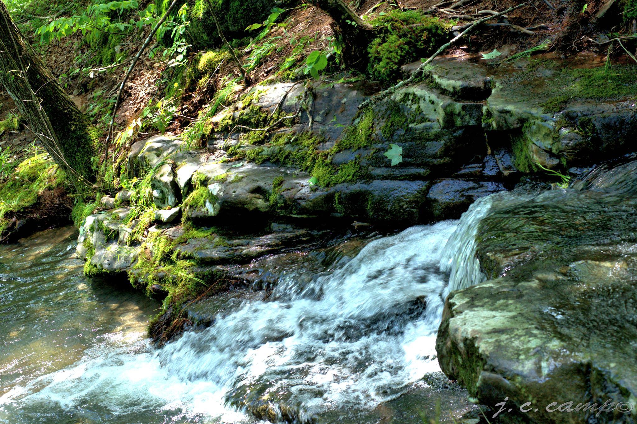 Cascade by Jim Camp
