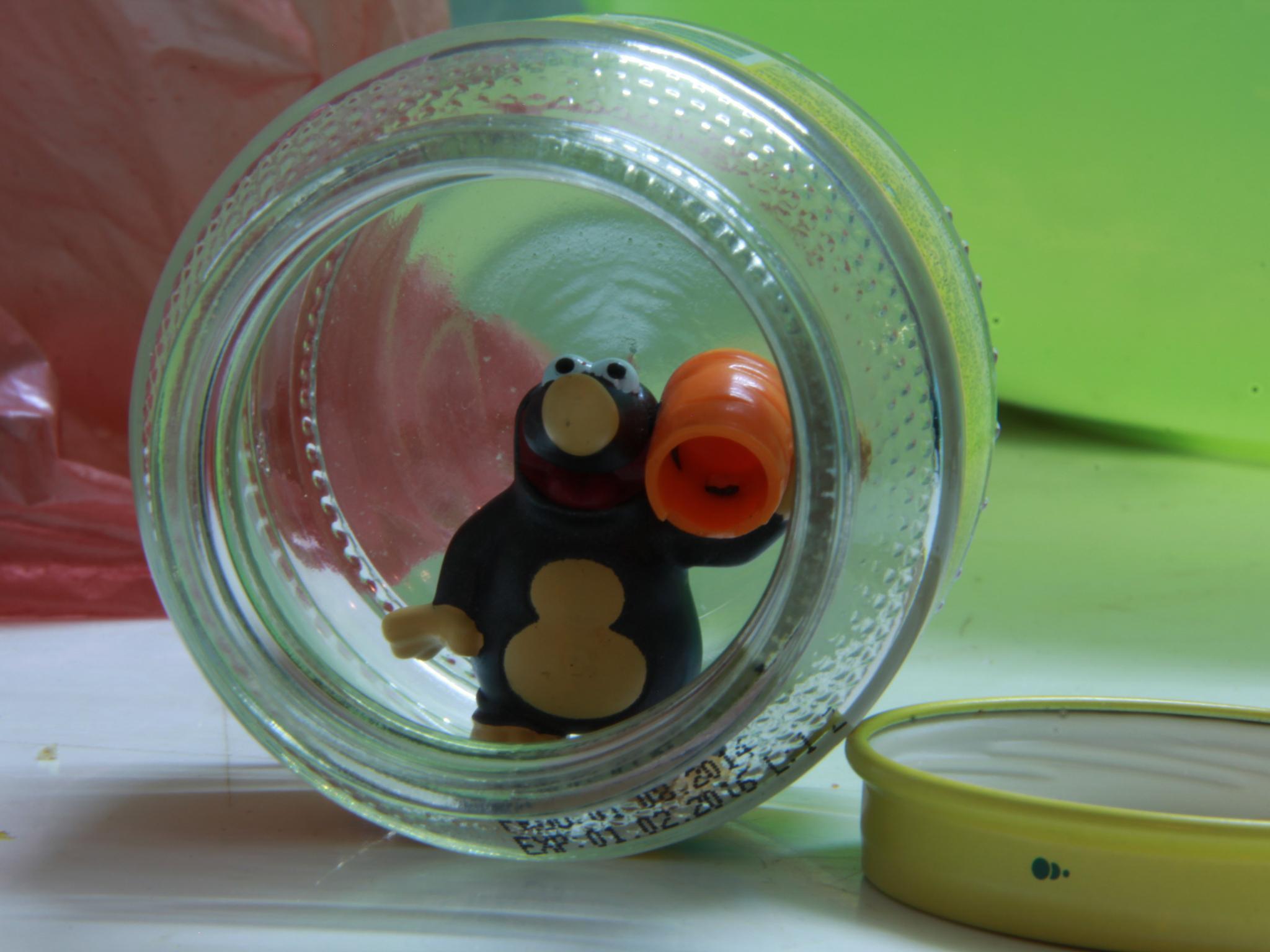 Photo in Random #tiny #jar #toy