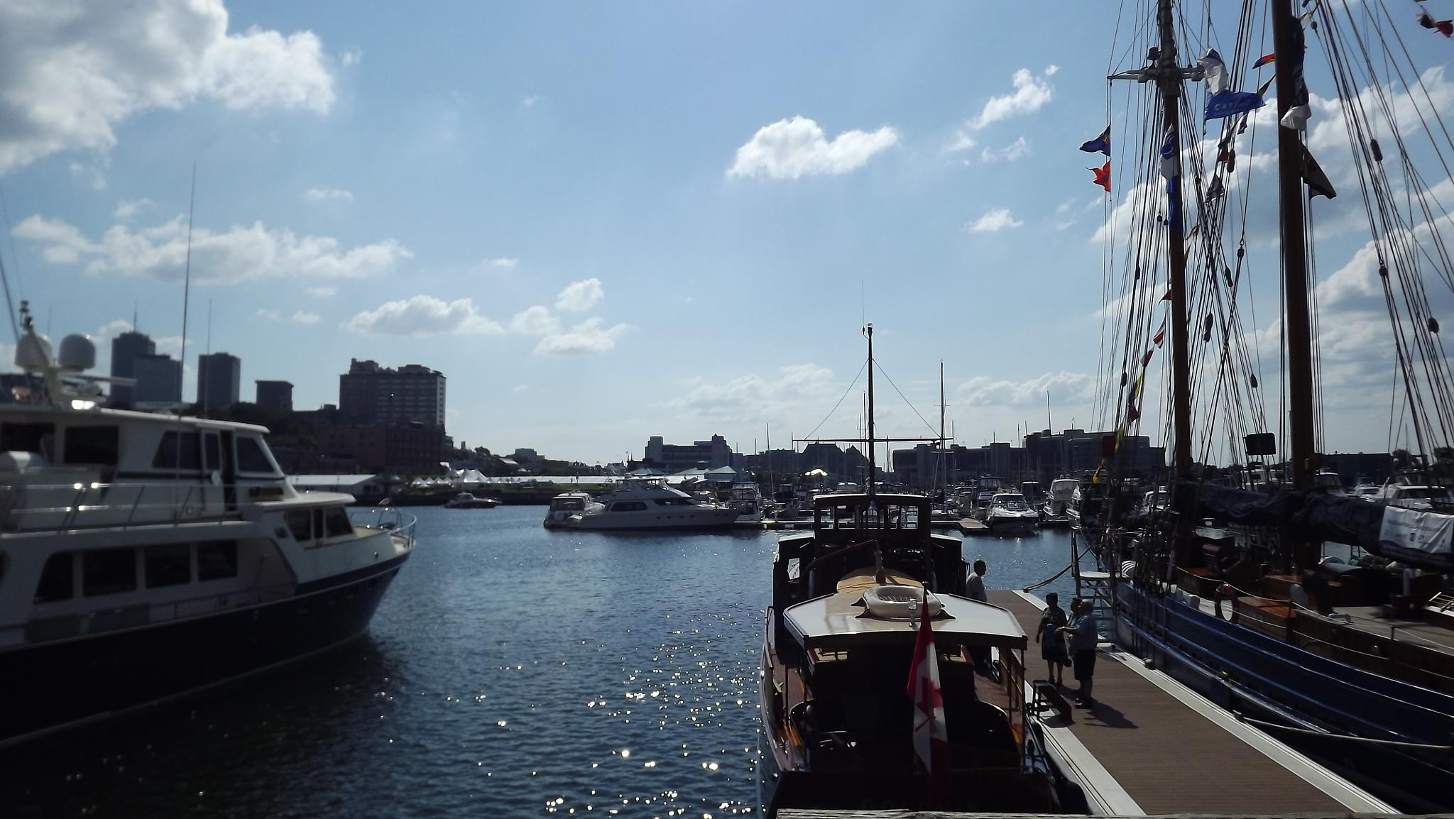 Sunny day marine boat by real.michaud.5036
