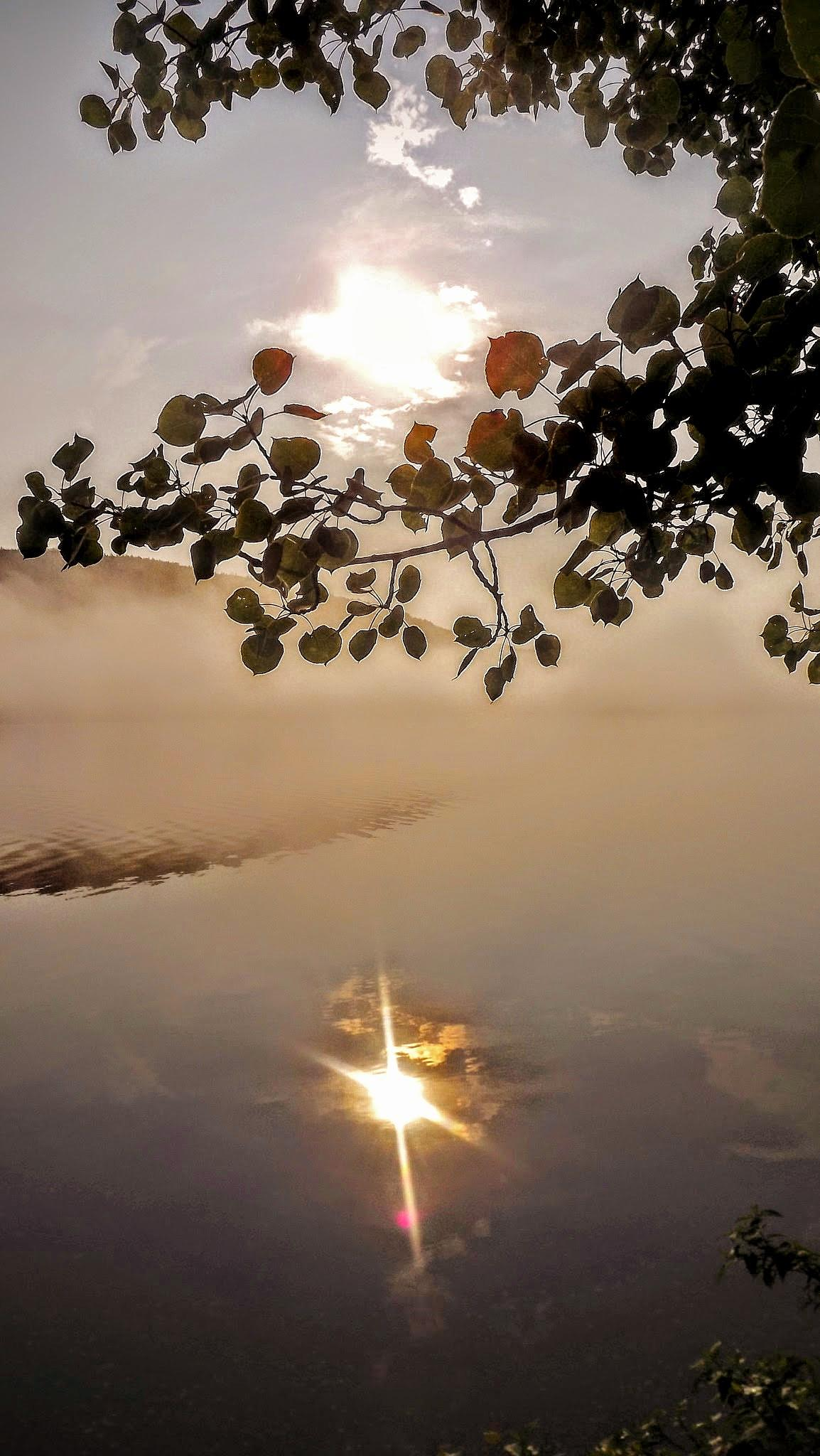 Sunrise reflection by real.michaud.5036