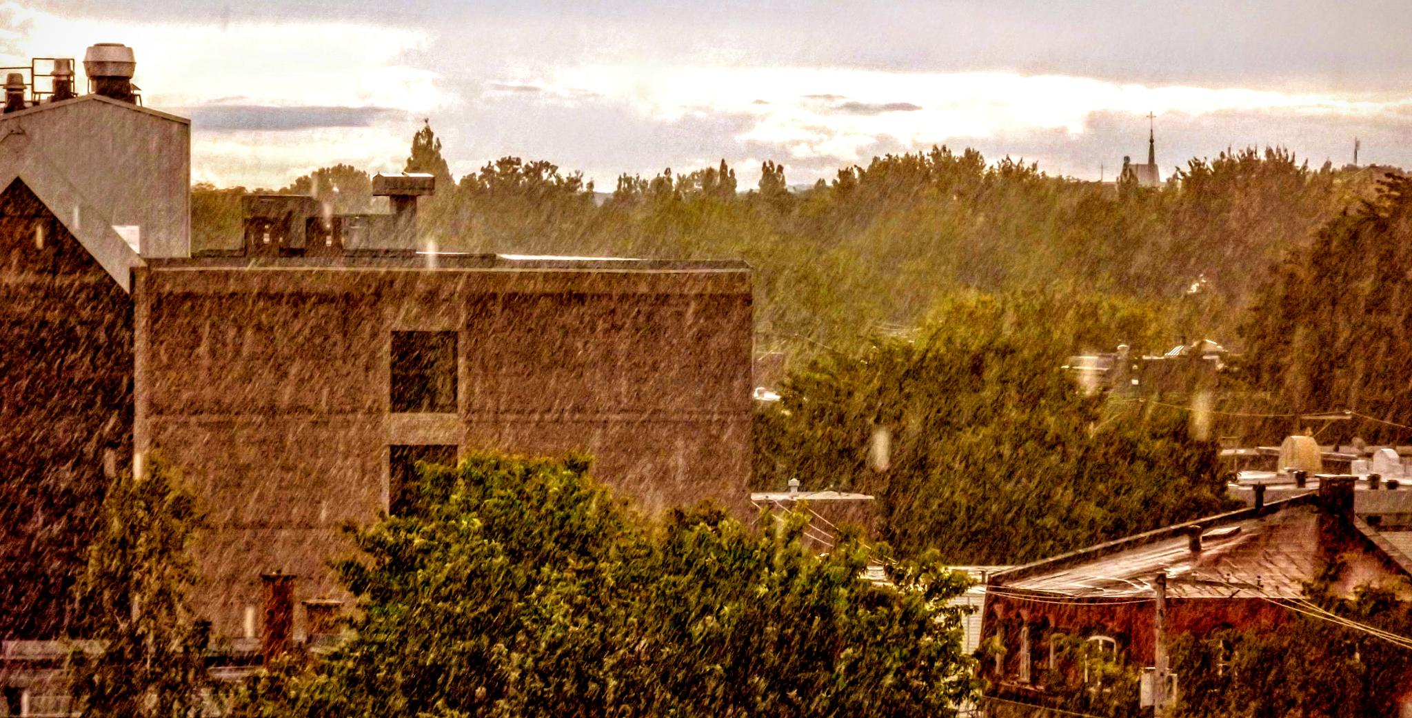 Rainy day by real.michaud.5036