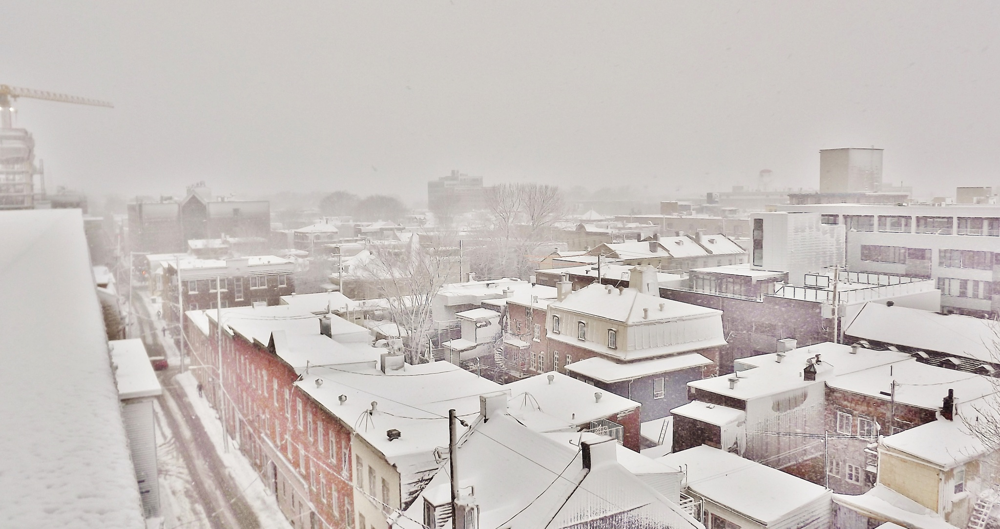 Snowy day by real.michaud.5036