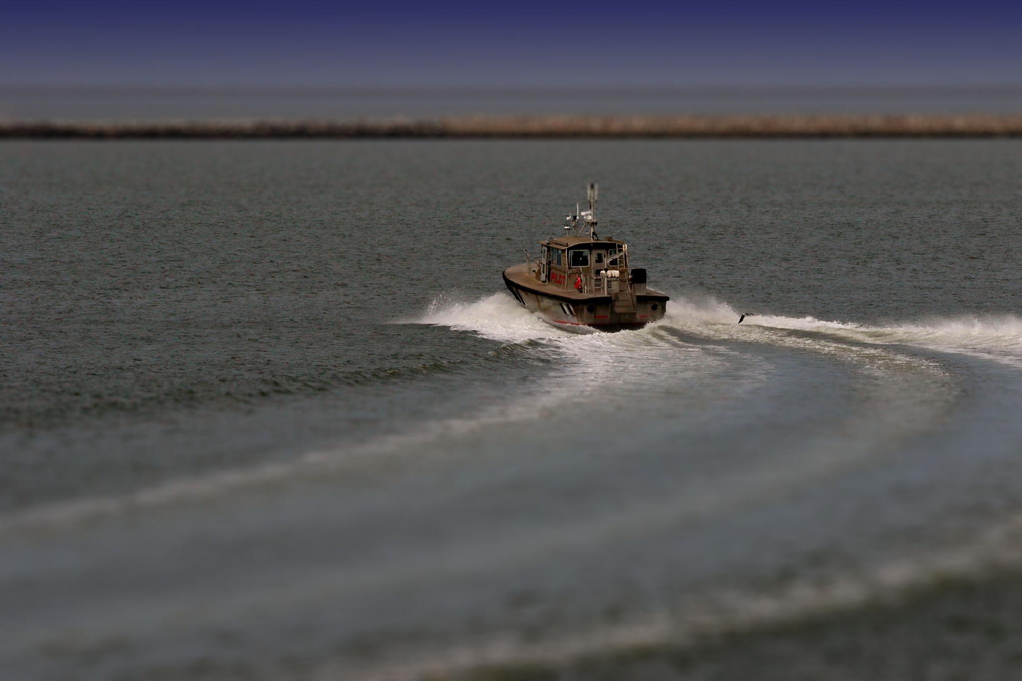Pilot Boat by Doug Bottalico