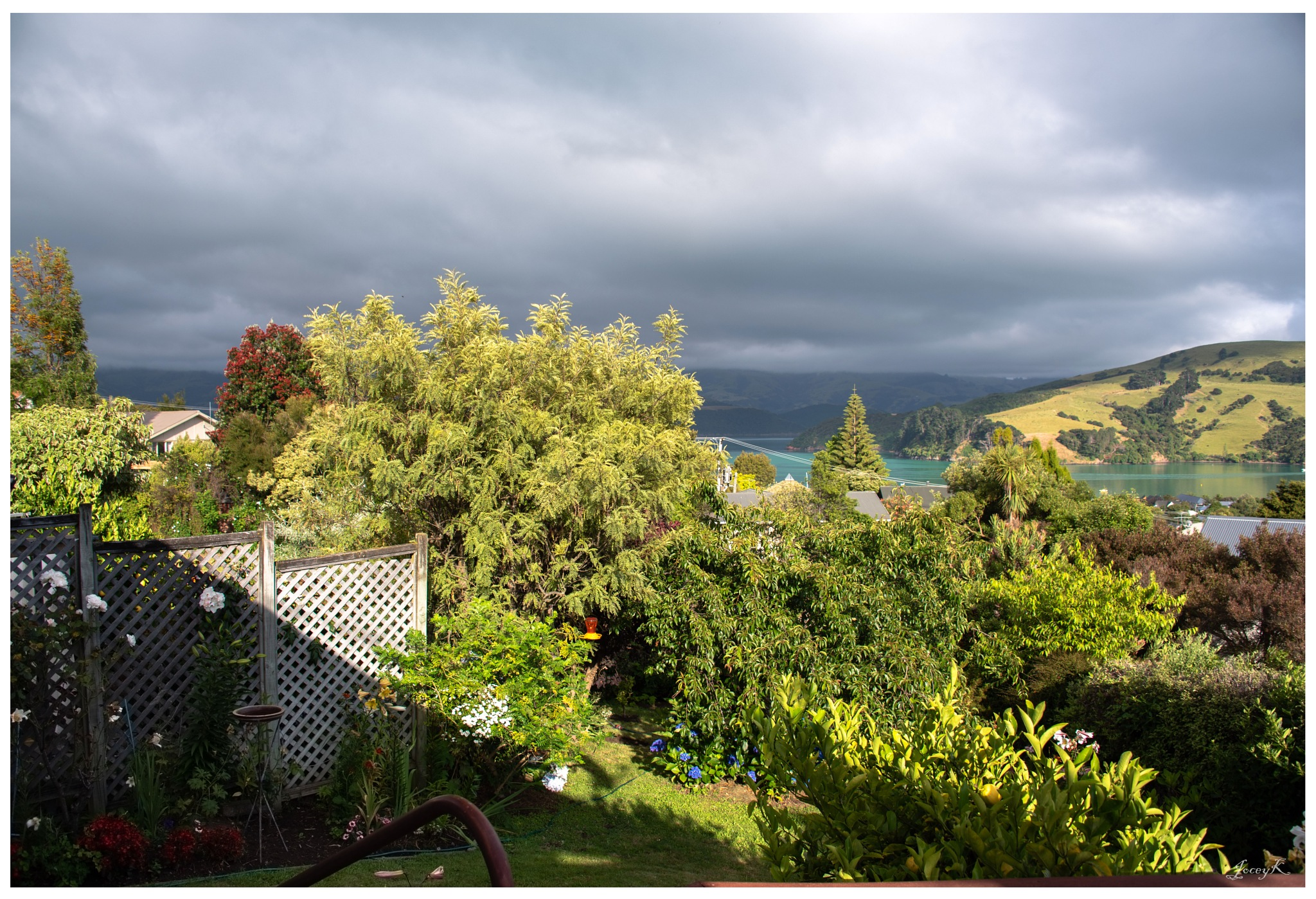 Rain on the Way by Jocelyn Kinghorn