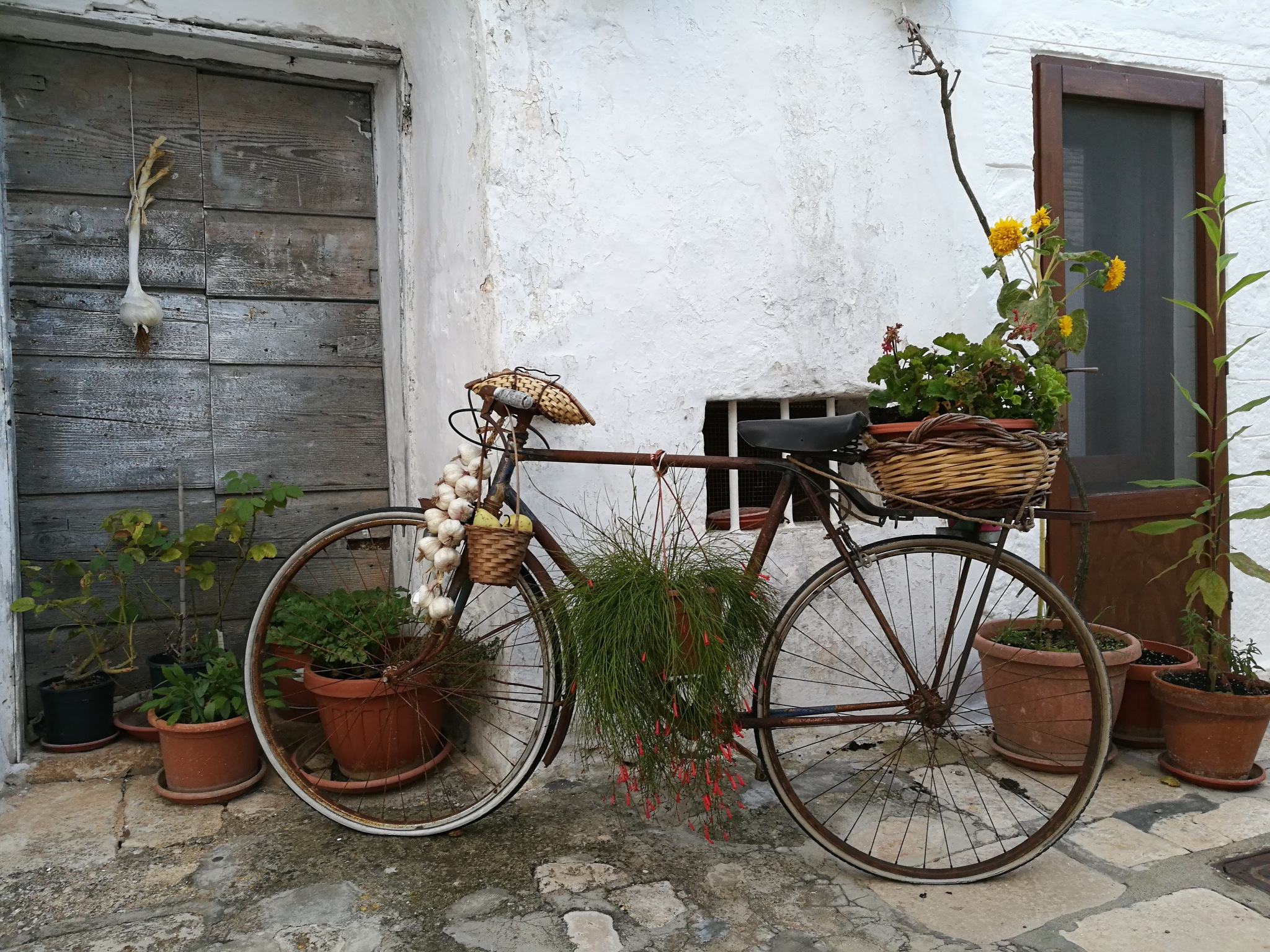the old bike by Nicola Magaletti