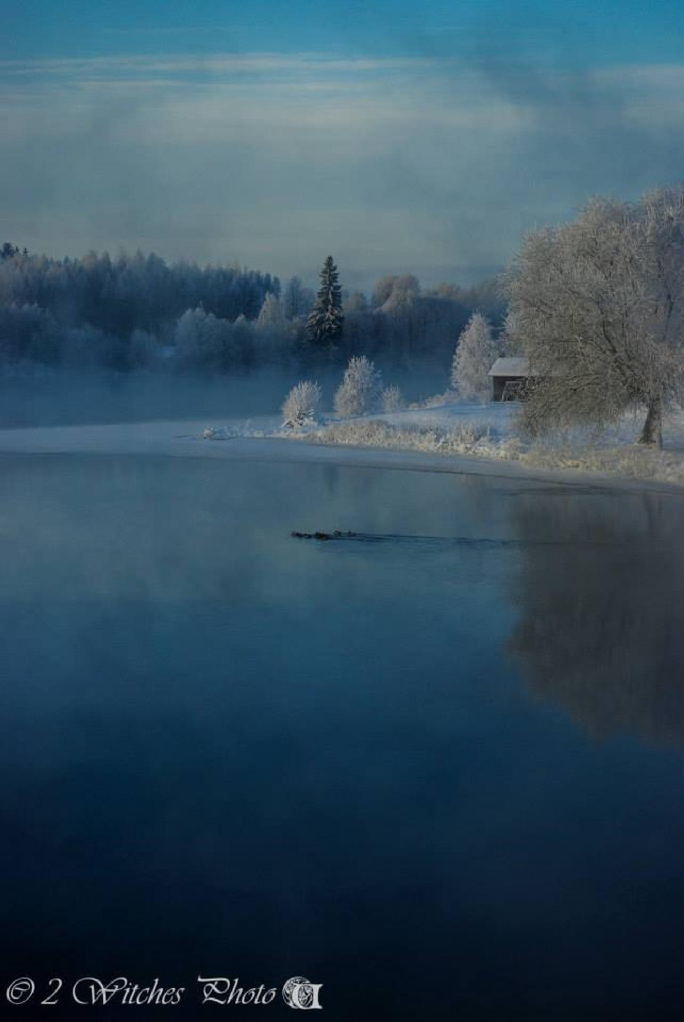 Cold winterday by Ulrika Örjas