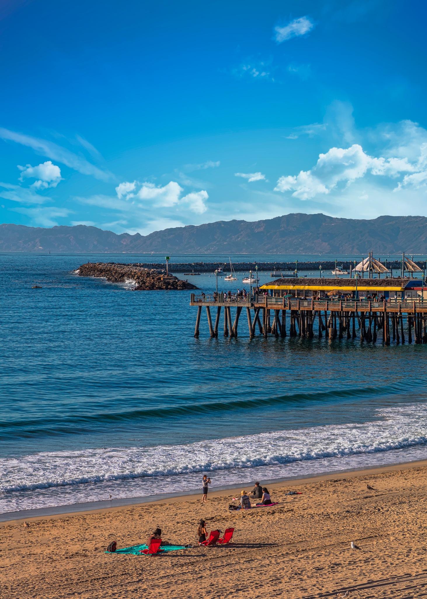 Redondo Beach Pier  by Janet Aguila Krause