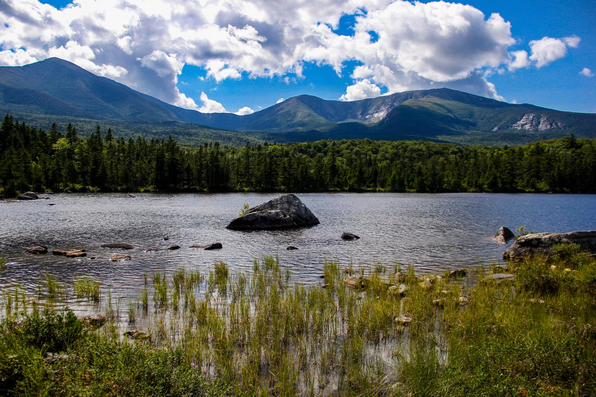 Summer! At Sandy Stream Pond, Baxter State Park - view of Mount Kathadin by Peggy Berger
