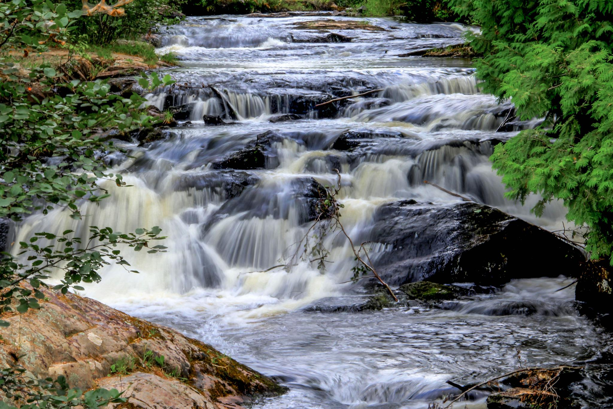 Stream by Peggy Berger
