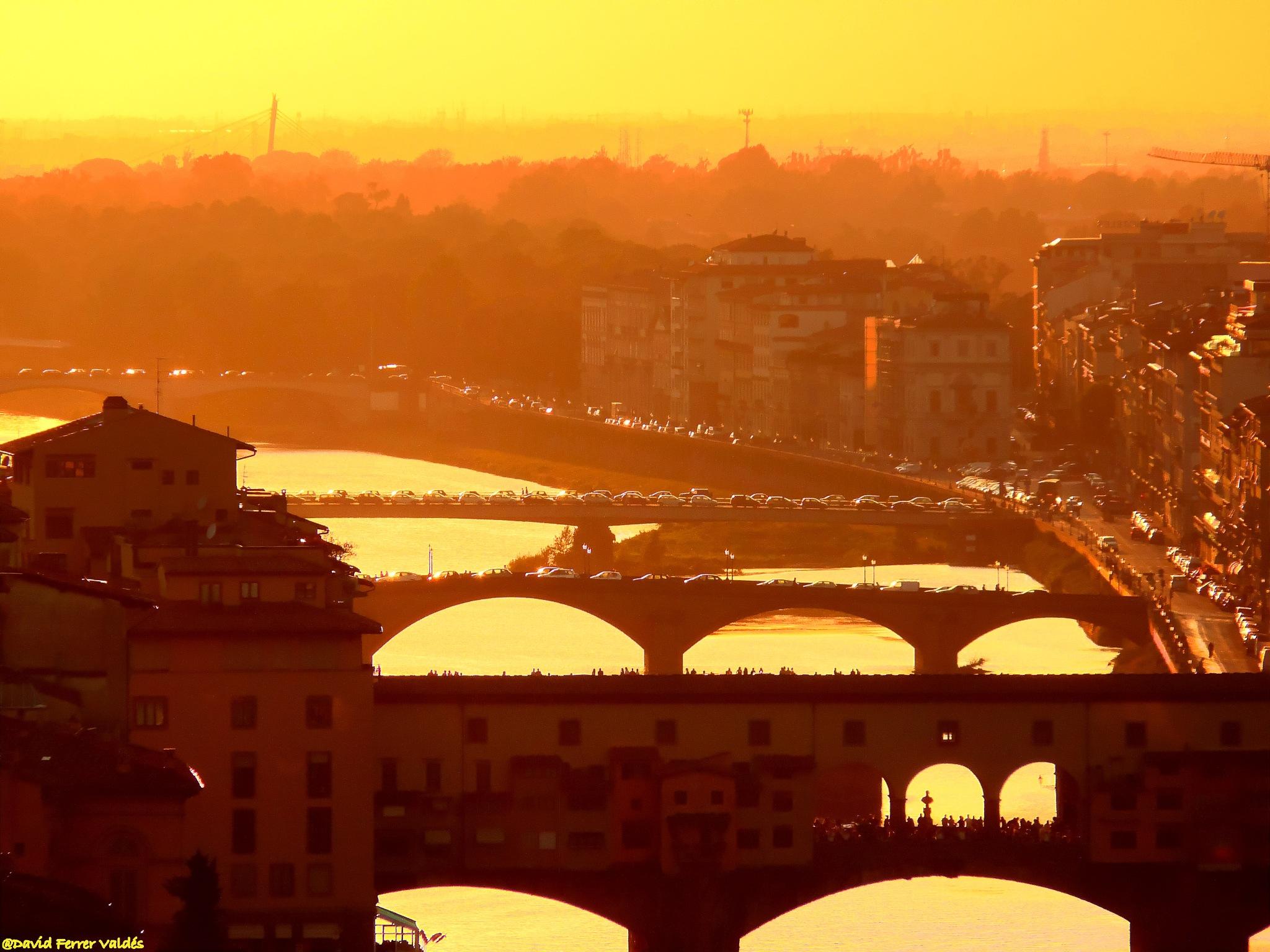 Orange Florence by davidferrervaldes