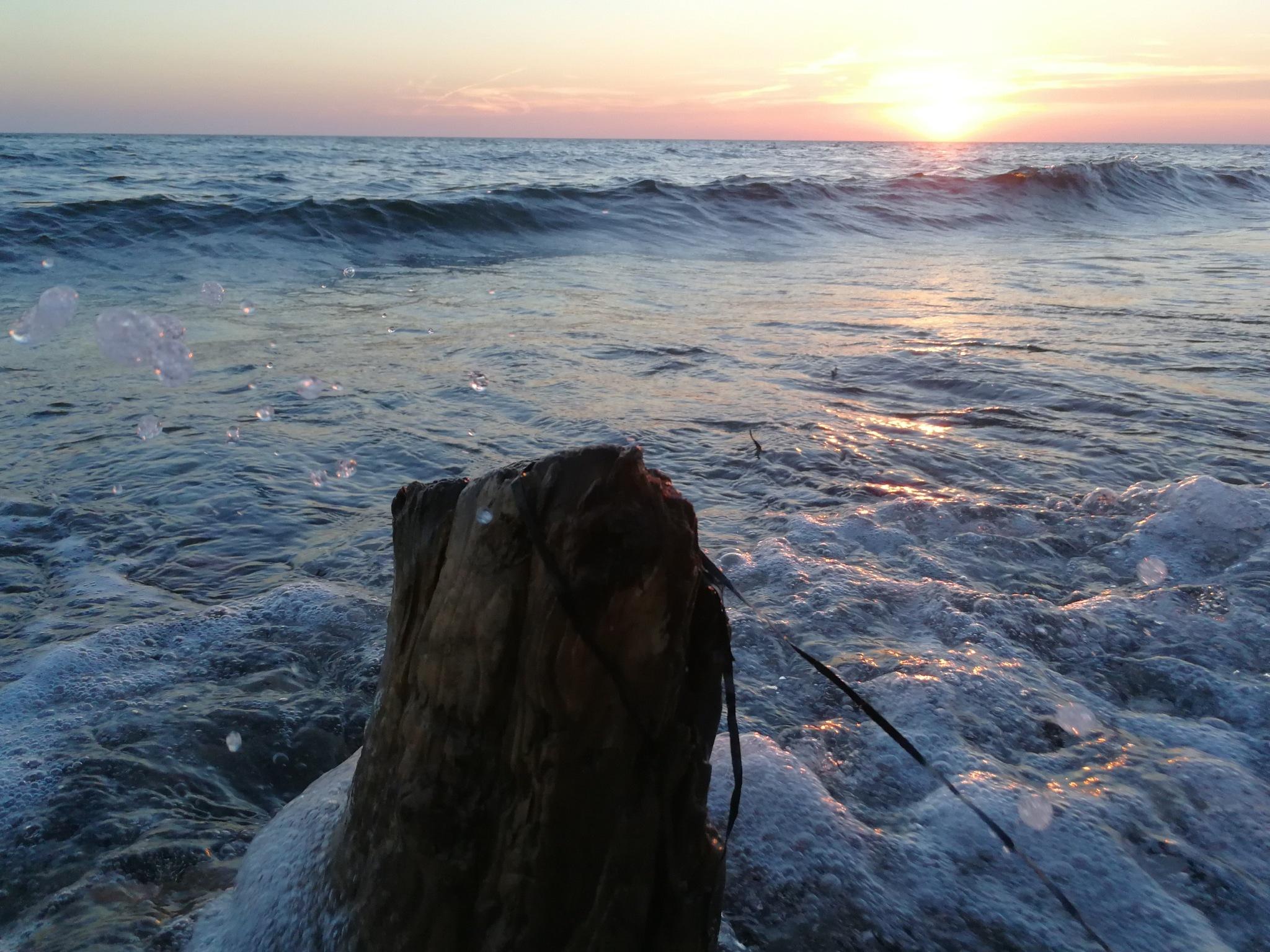 seashore by karlerik.straarup