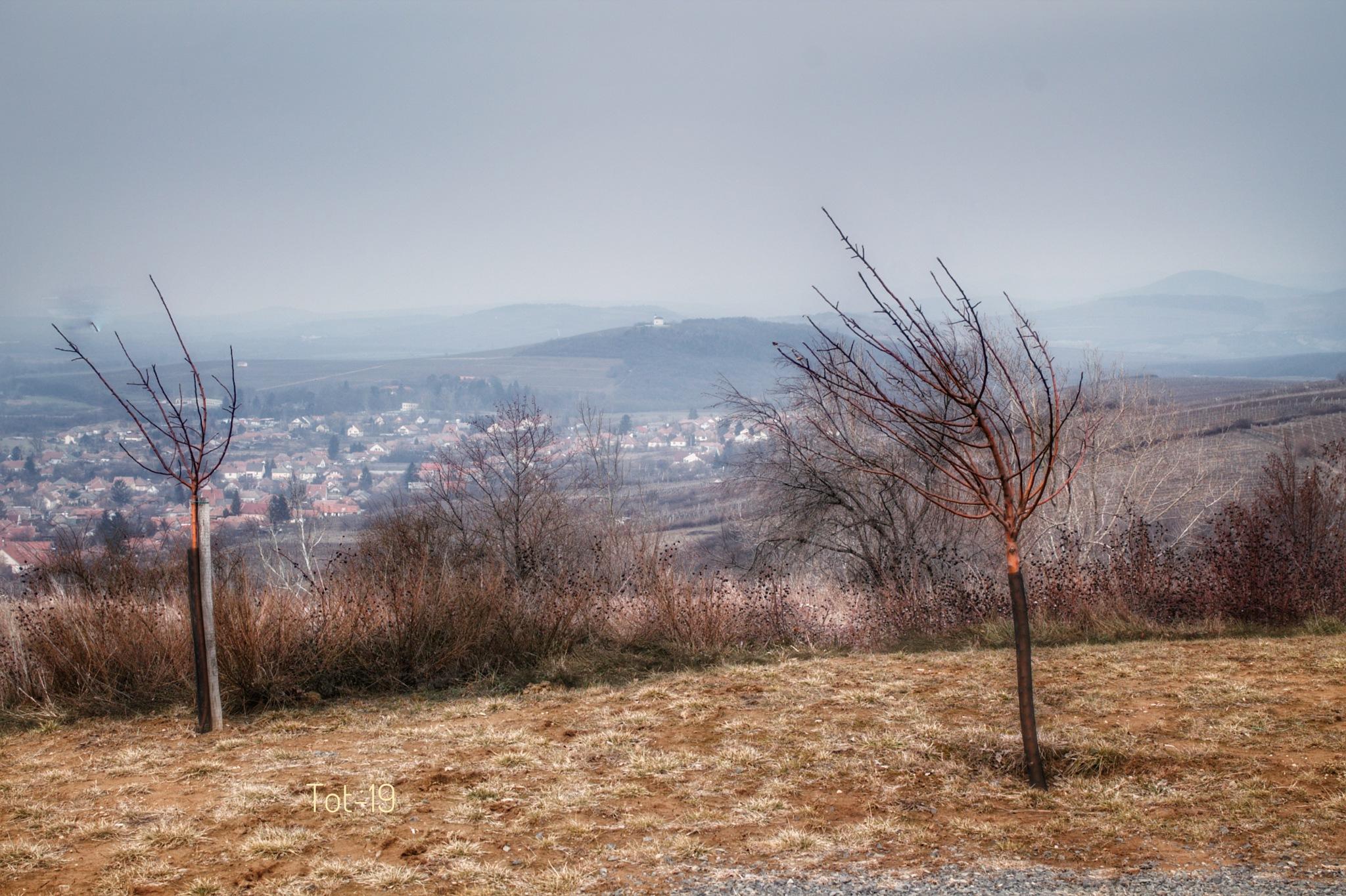 Photo in Random #landscape #nature #outdoors