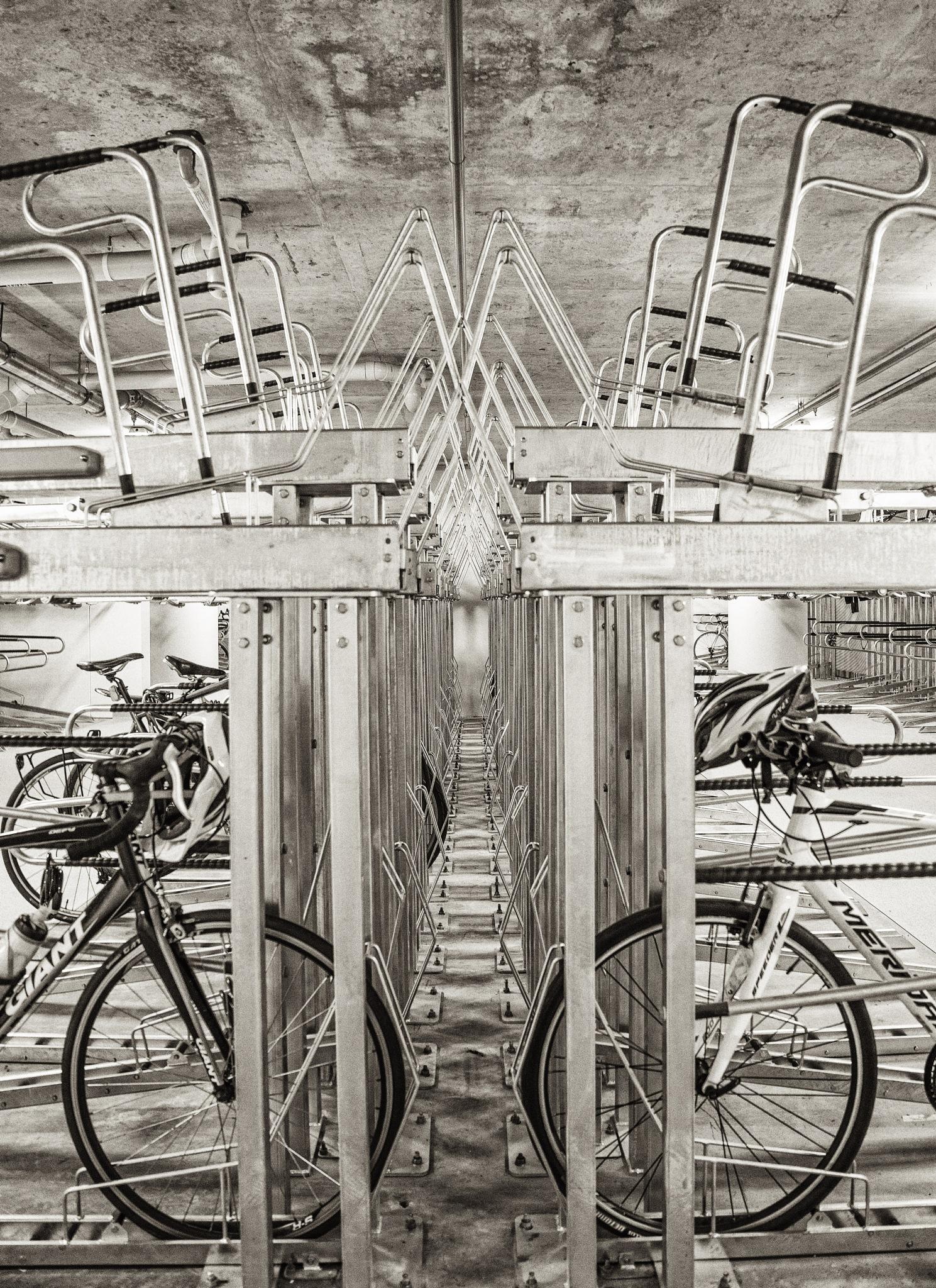 Row Upon Row. by ensbassatt