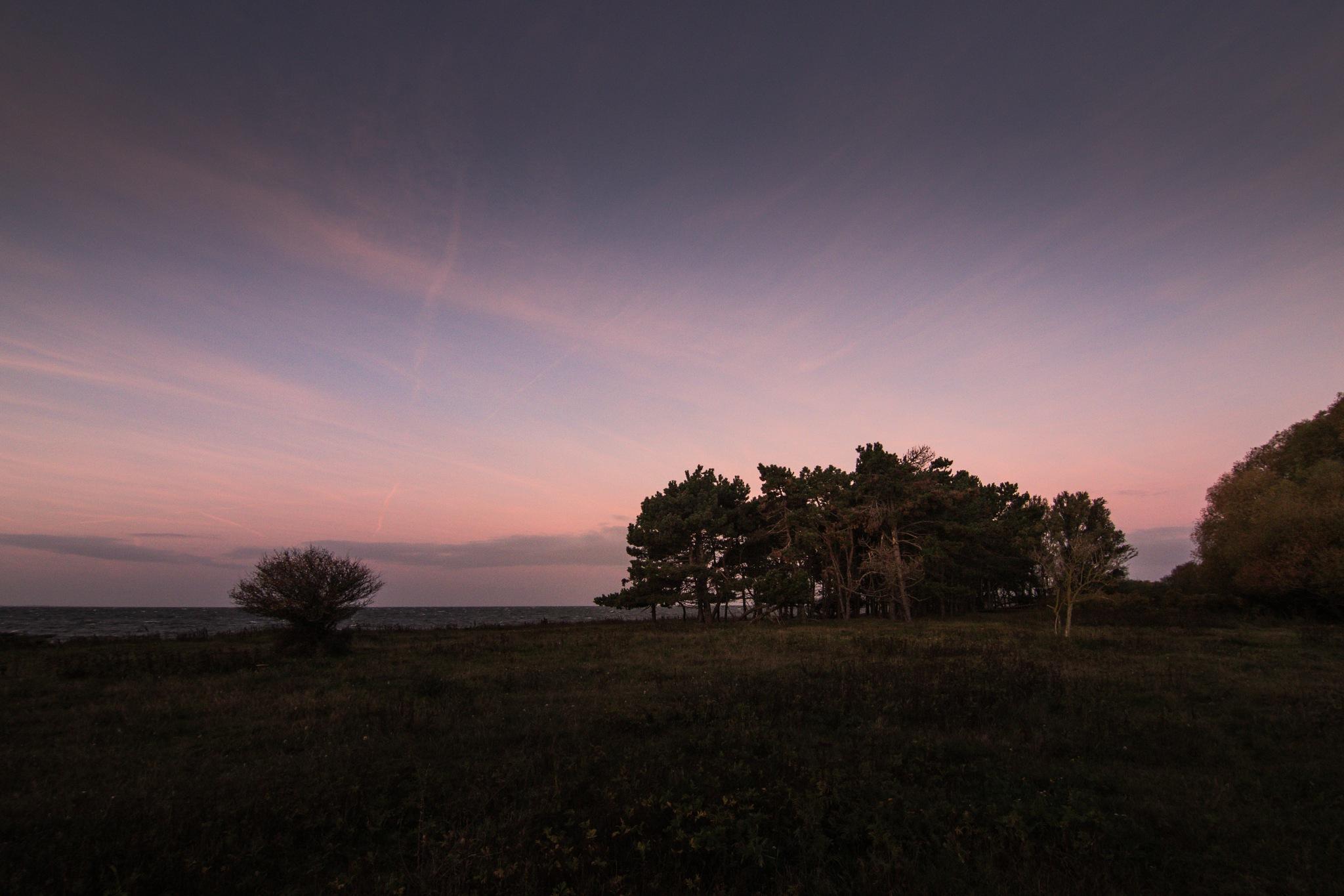 Morning light by Michael B. Rasmussen