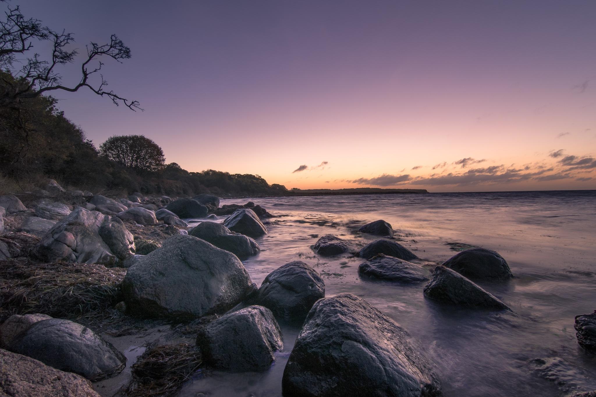 Along the coast by Michael B. Rasmussen