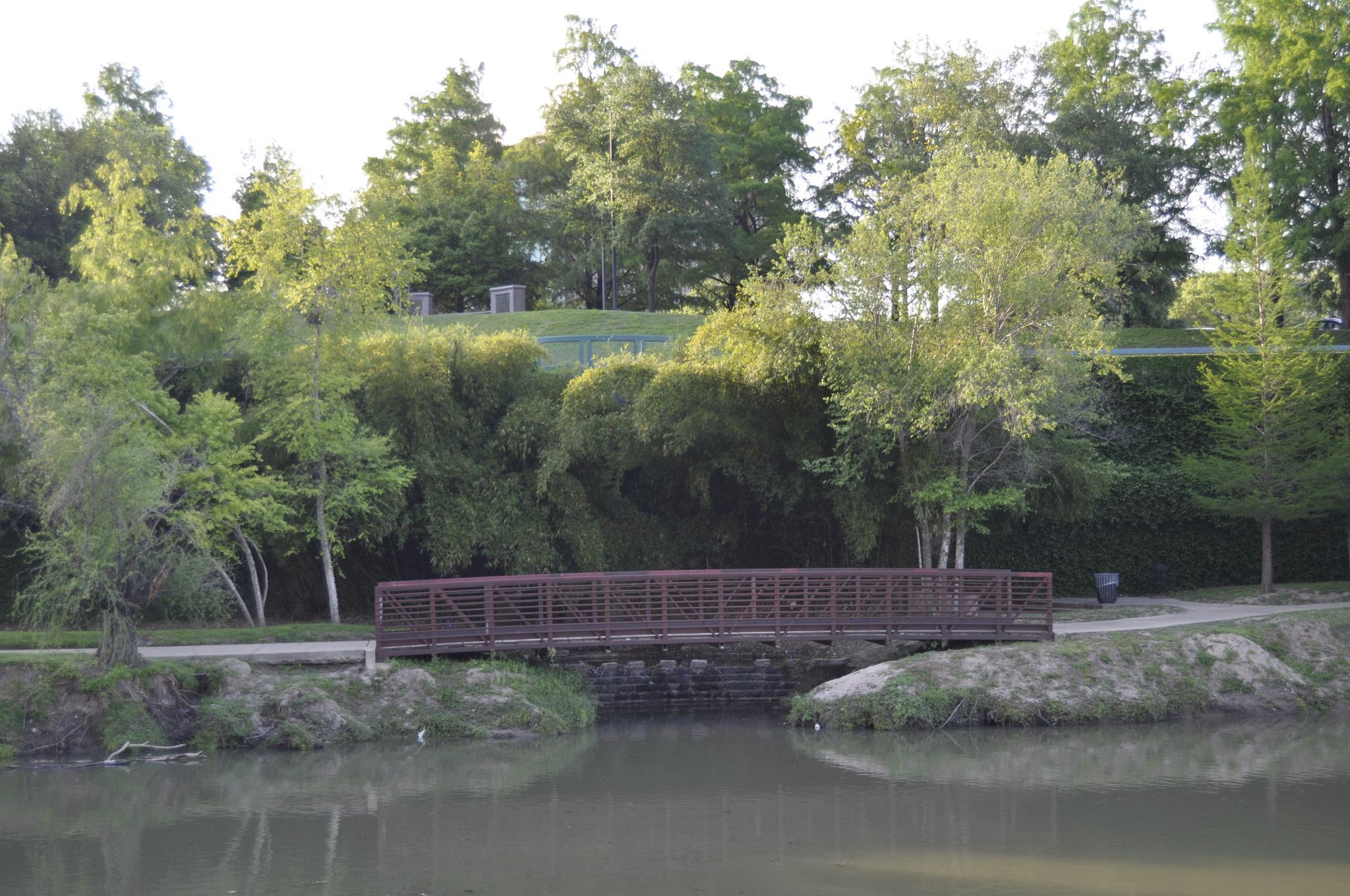 Bridge by Timlerue