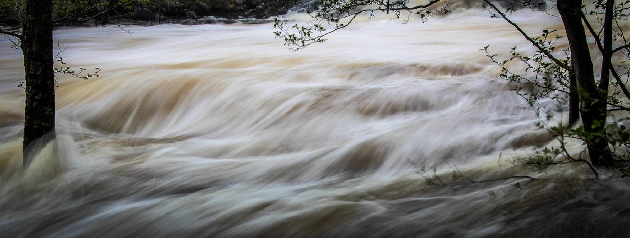 Spring flood by Sven Årnes