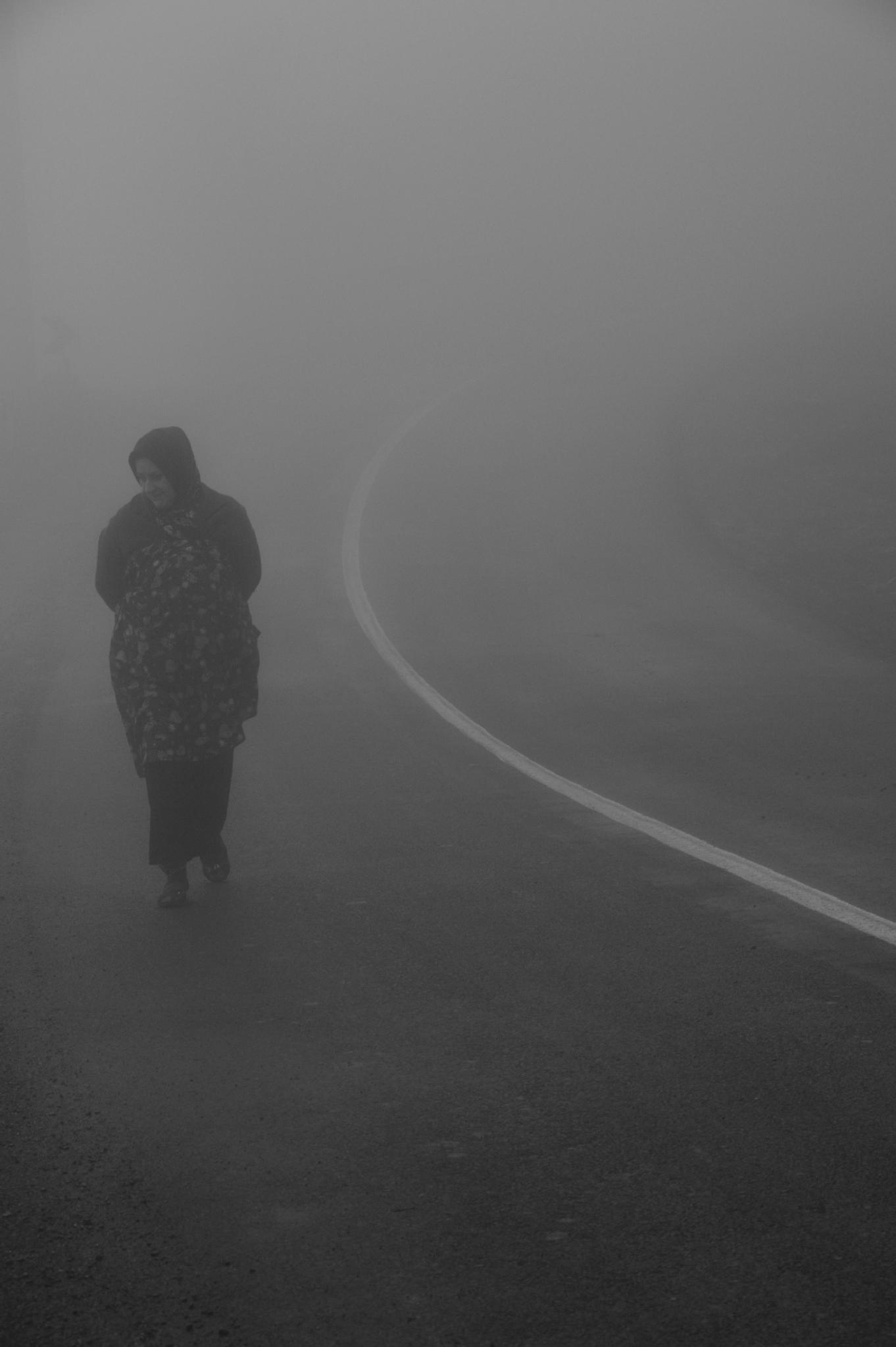in the fog by RezaNajib