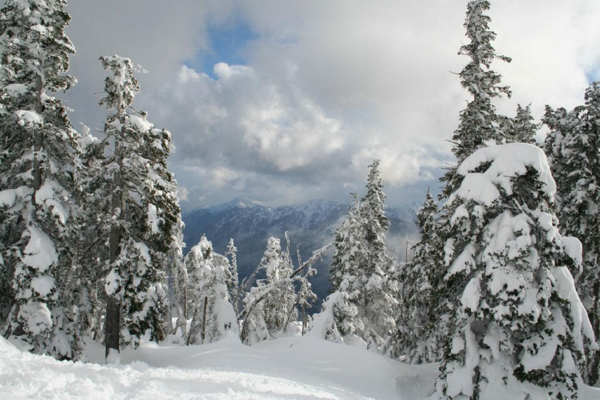 Snow by peyton0104