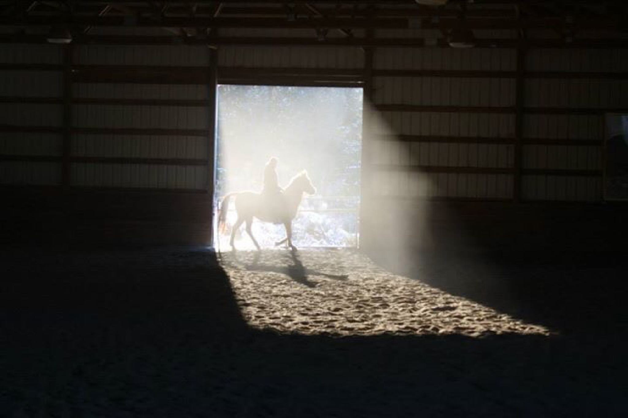 Dusty riding by peyton0104