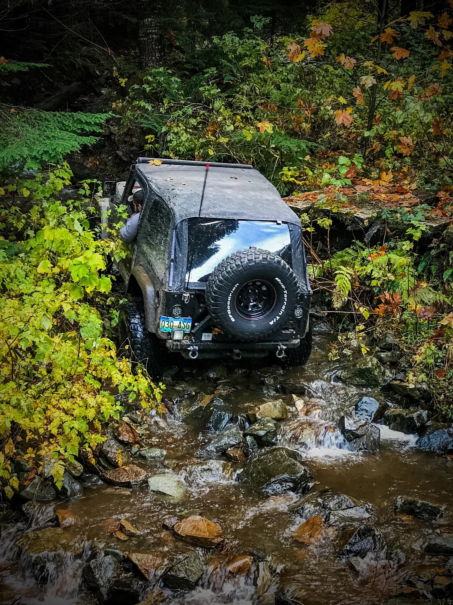 Through the Creek  by peyton0104