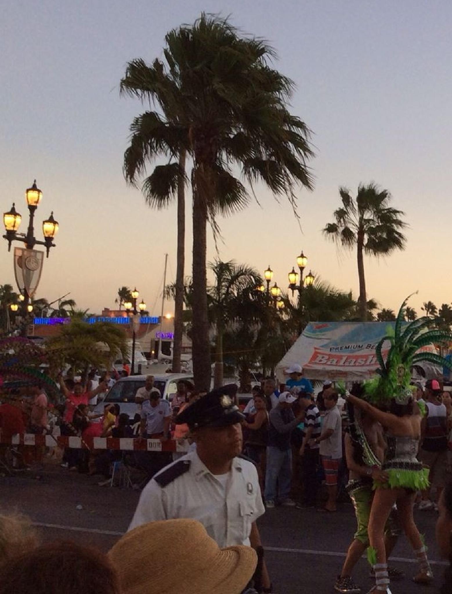 Carnival in Aruba by maria.fahlqvistagren