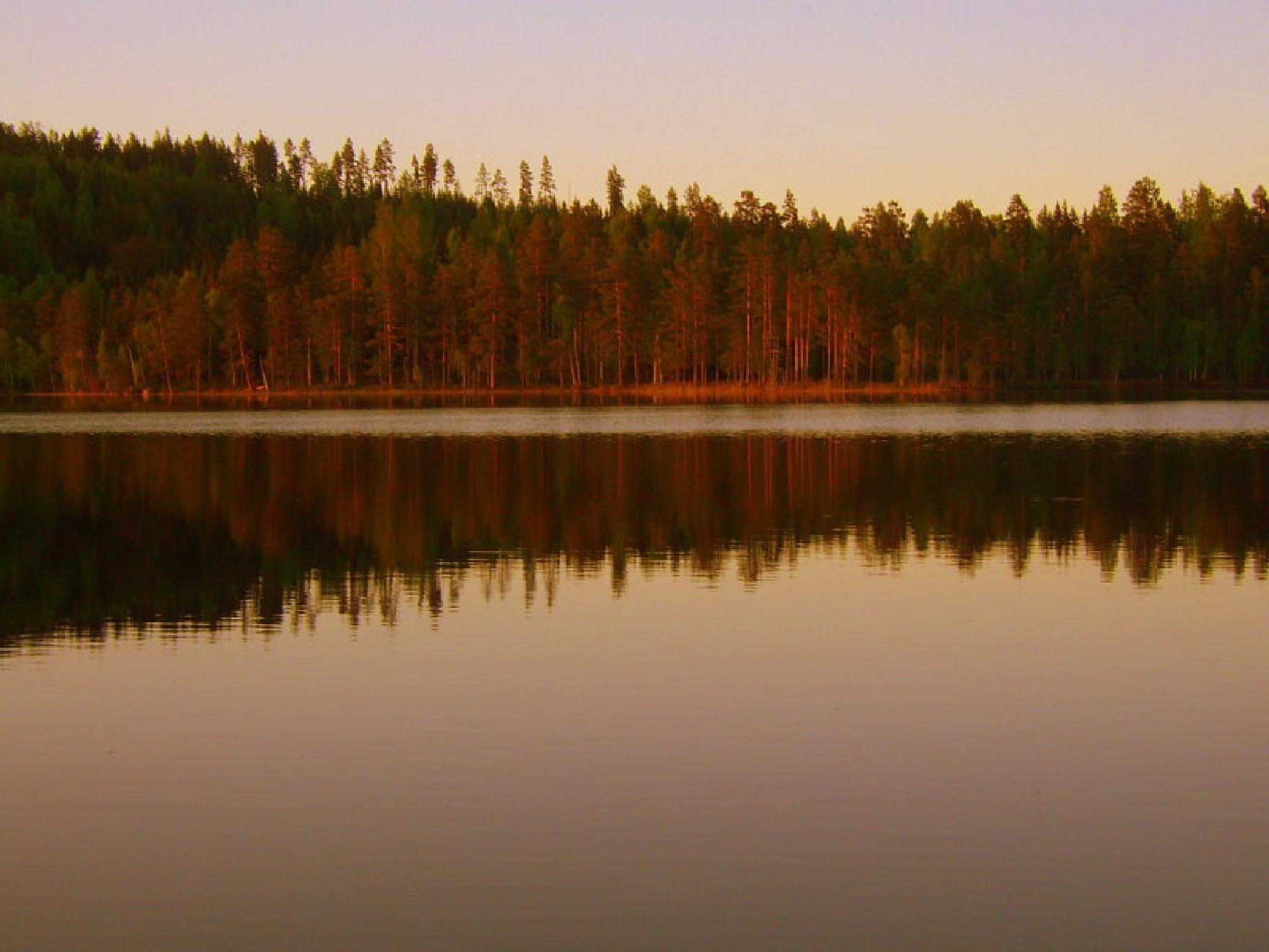 Rose Lake hälsingland Sweden by maria.fahlqvistagren