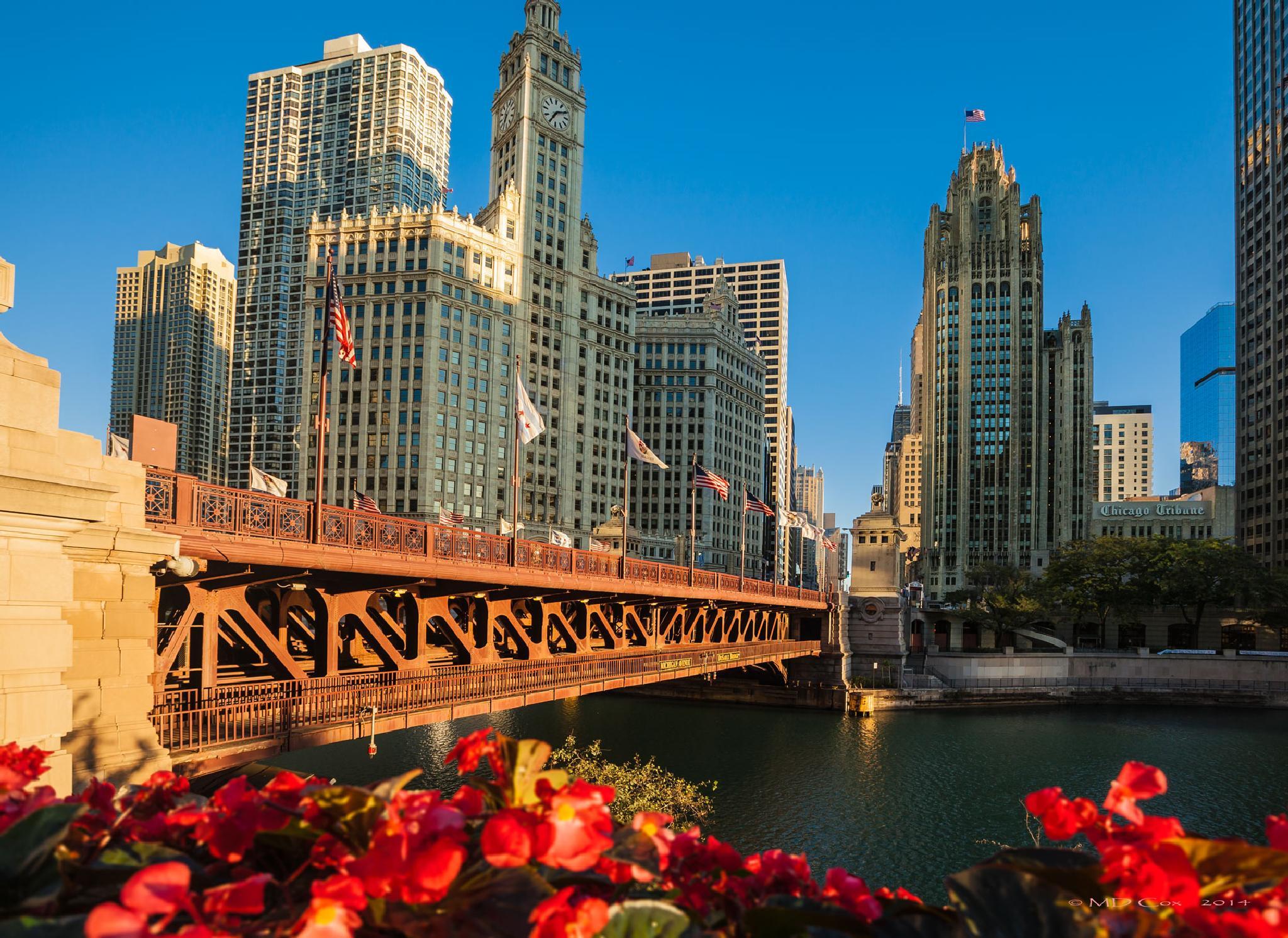 Michigan Avenue Bridge by Michael Cox