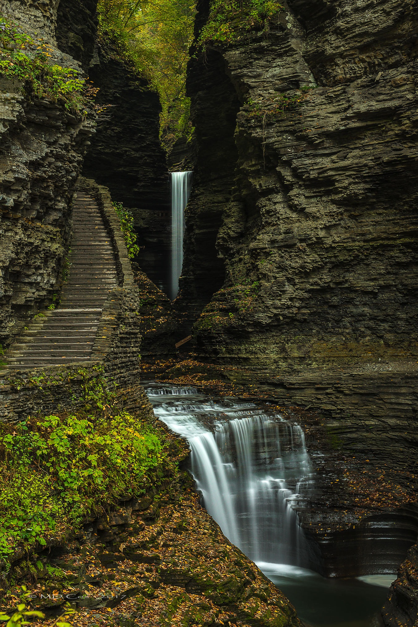 Watkins Glen 3 by Michael Cox