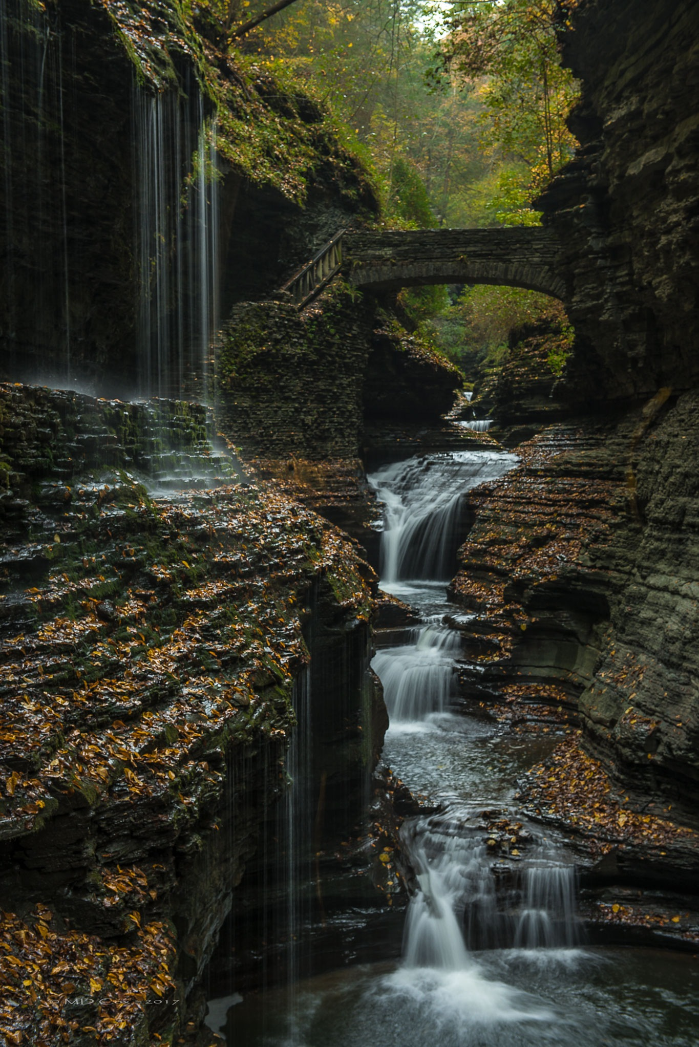 Falls in Autumn by Michael Cox