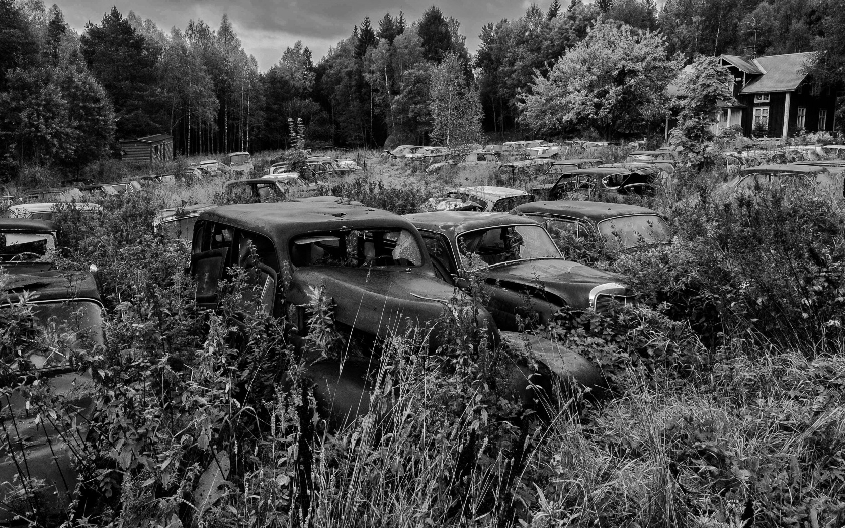 The old car cemetery by micke.wallman