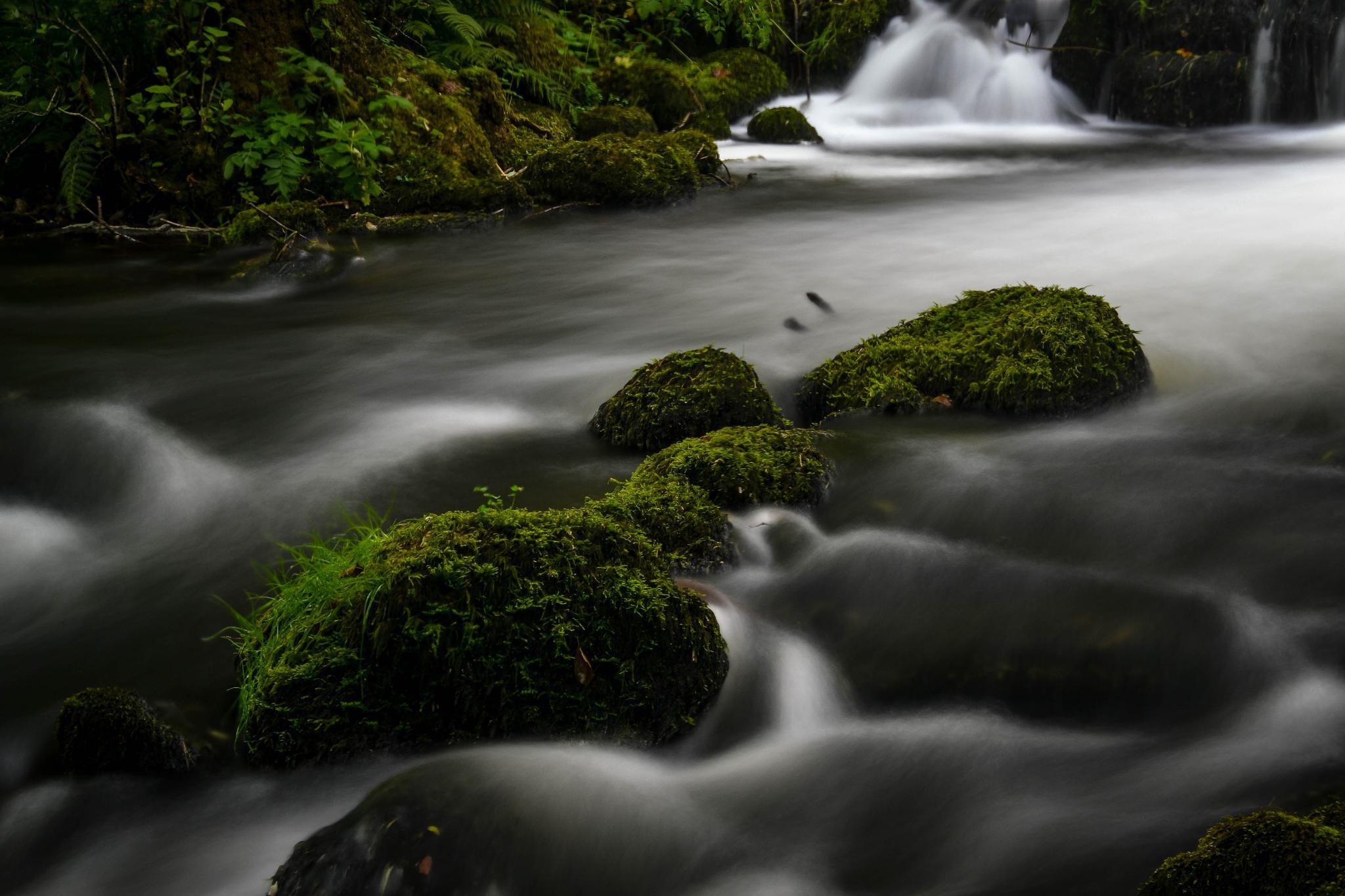 Rushing River by MjollnirMacAlba