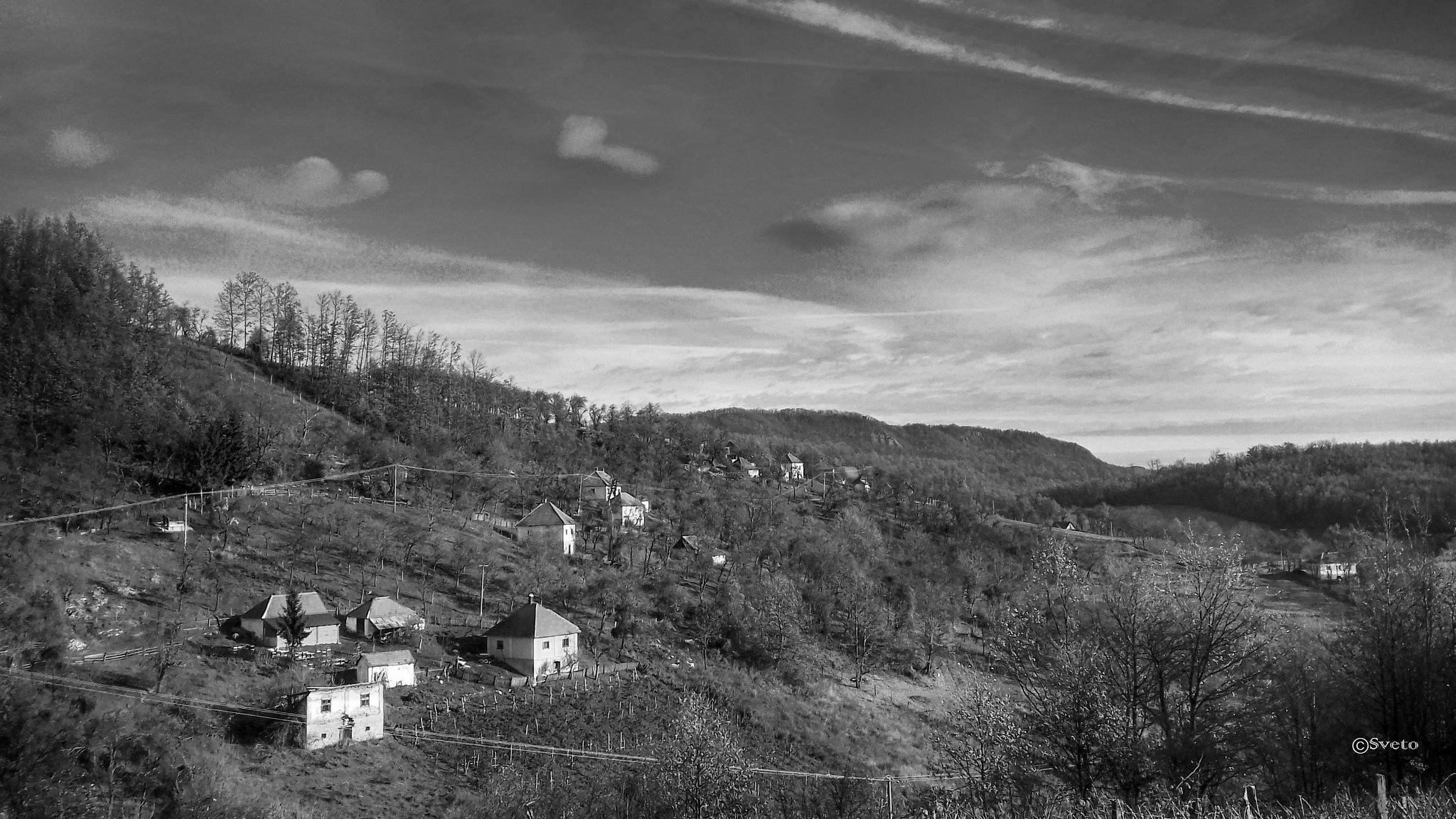 Makovište, Srbija  by stevsveto