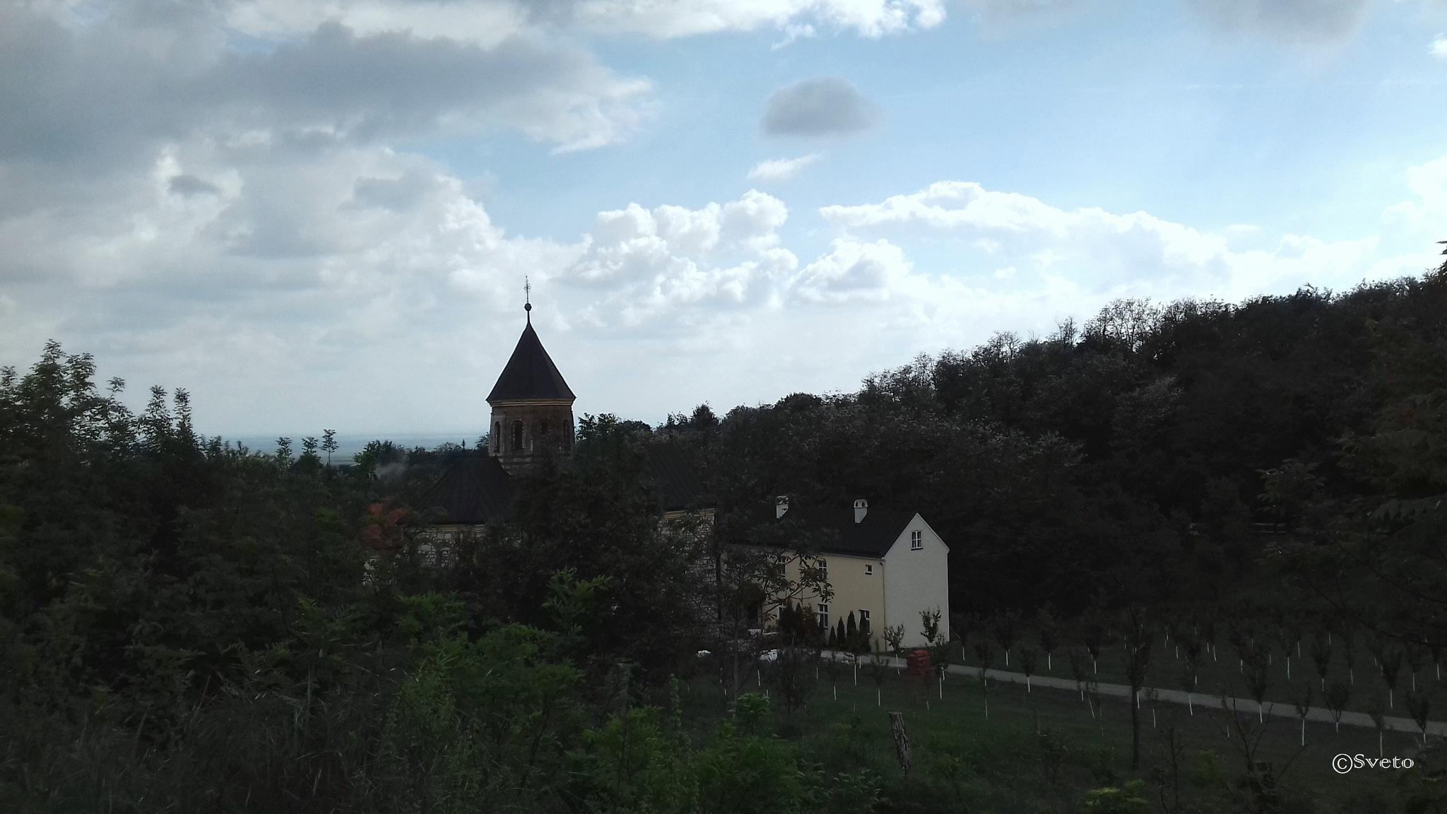 Фрушка Гора, Србија  by stevsveto
