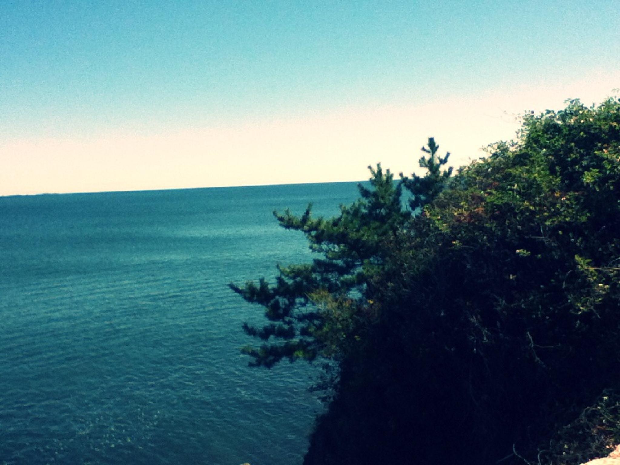 ocean by lifelover