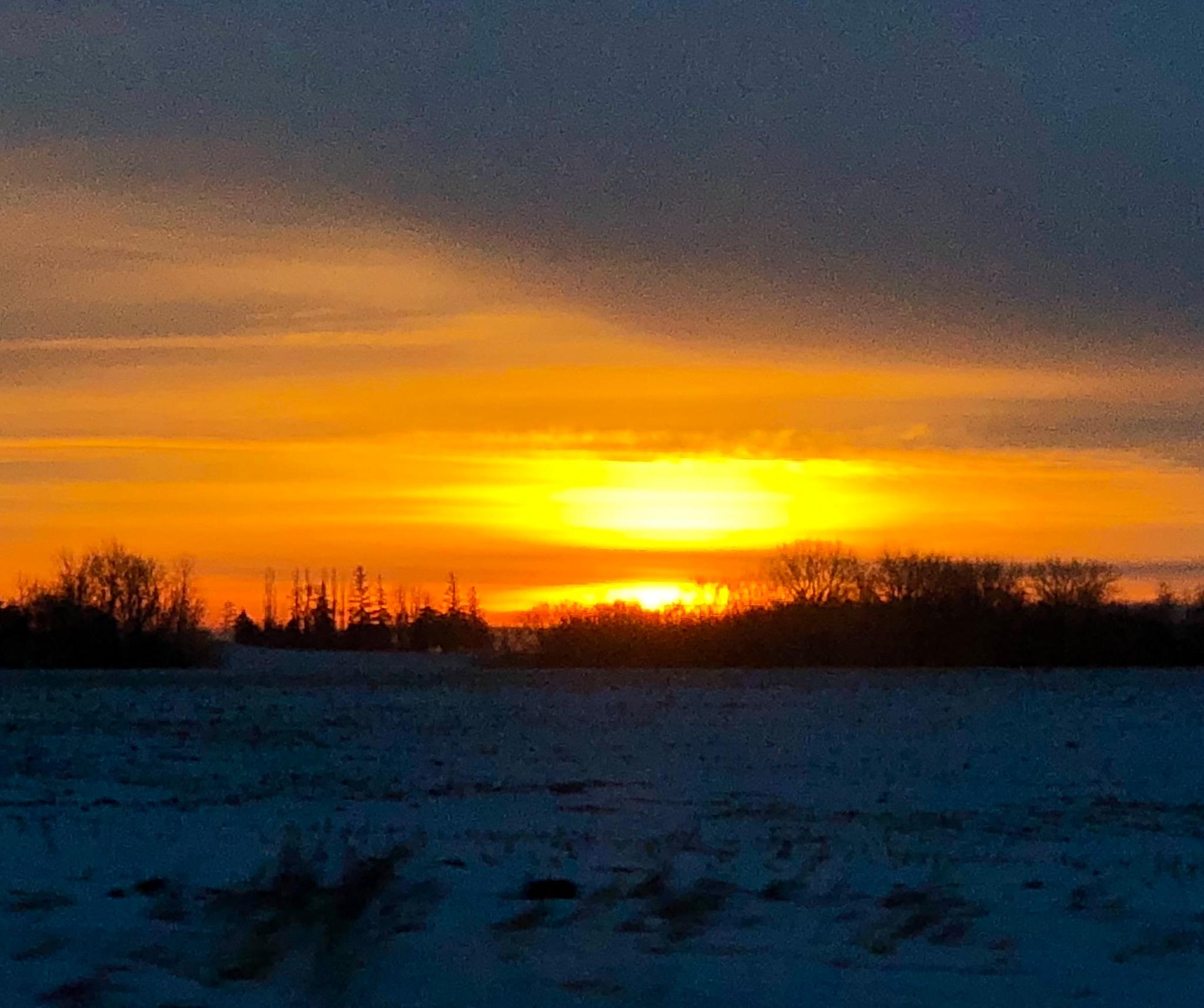 Minnesota winter sunrise  by ReneeEPlemmons