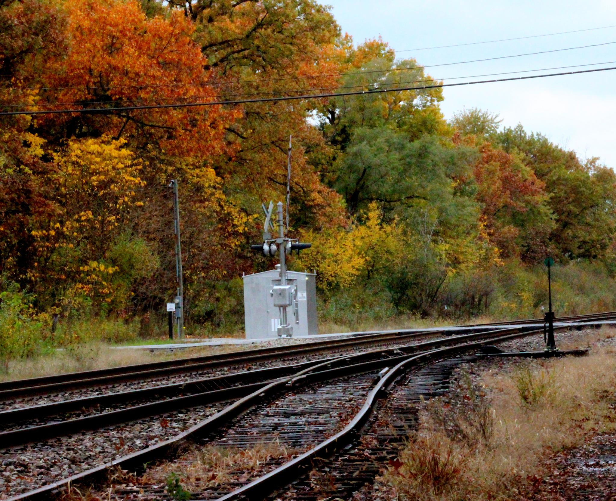 Fall along the  tracks. by CDH3Photography