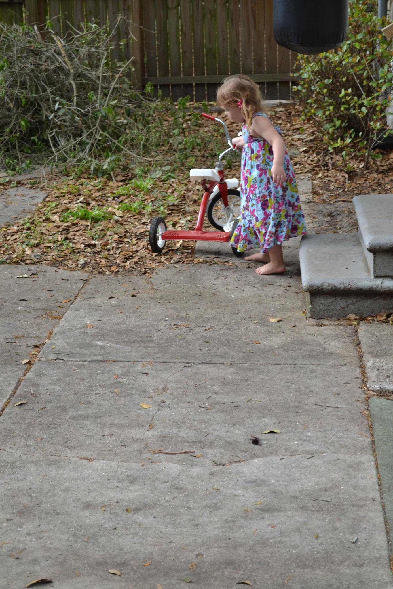 Trike Ride by mary.keenantownsend