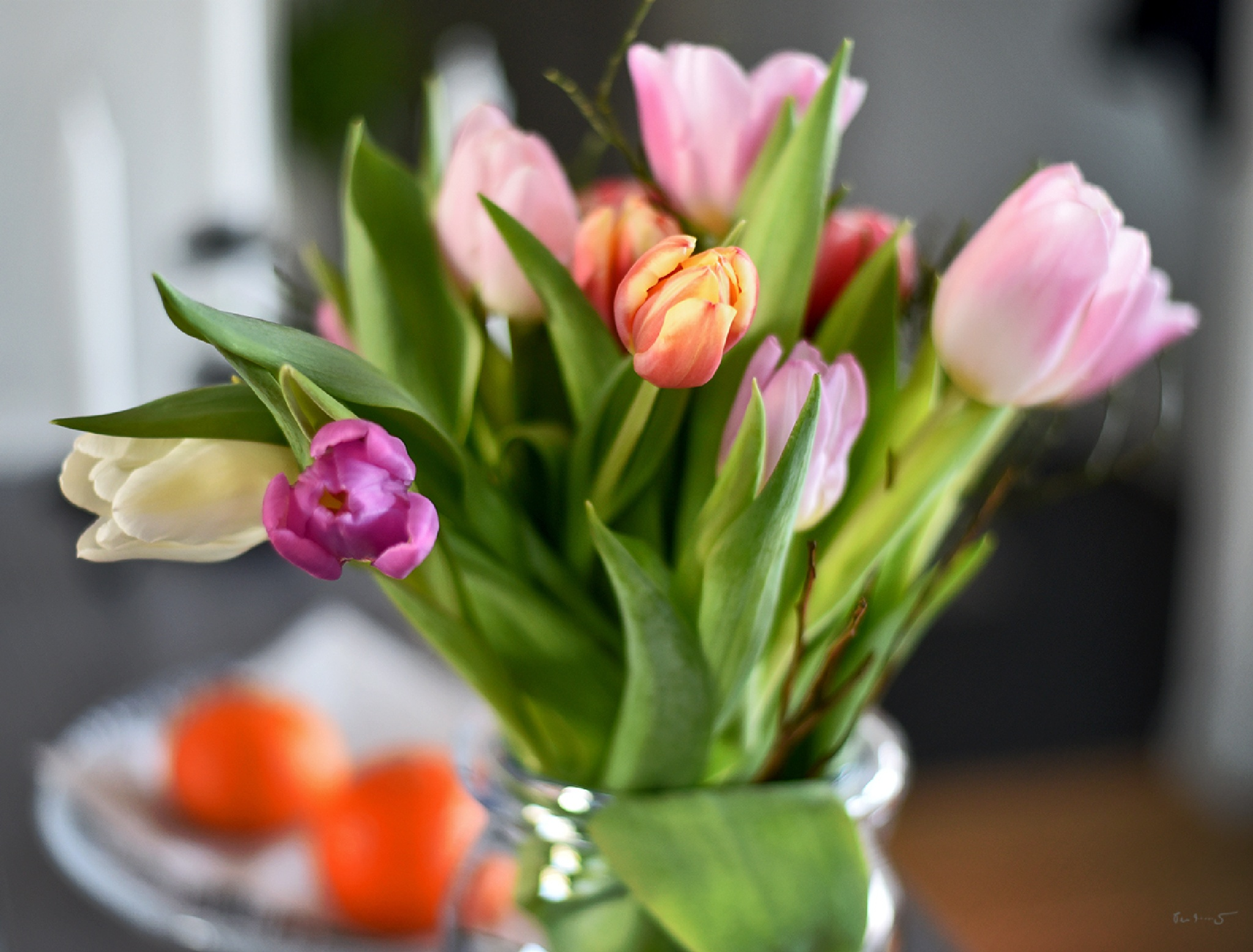 Tulip love by Per Arnesjö