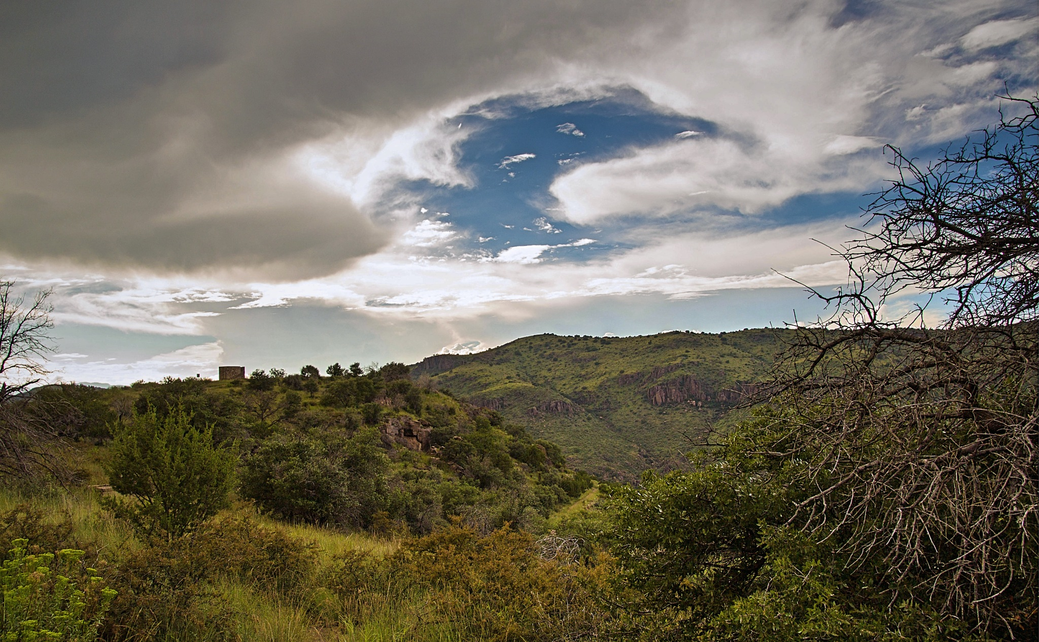 Davis Mountains by Michael Hines
