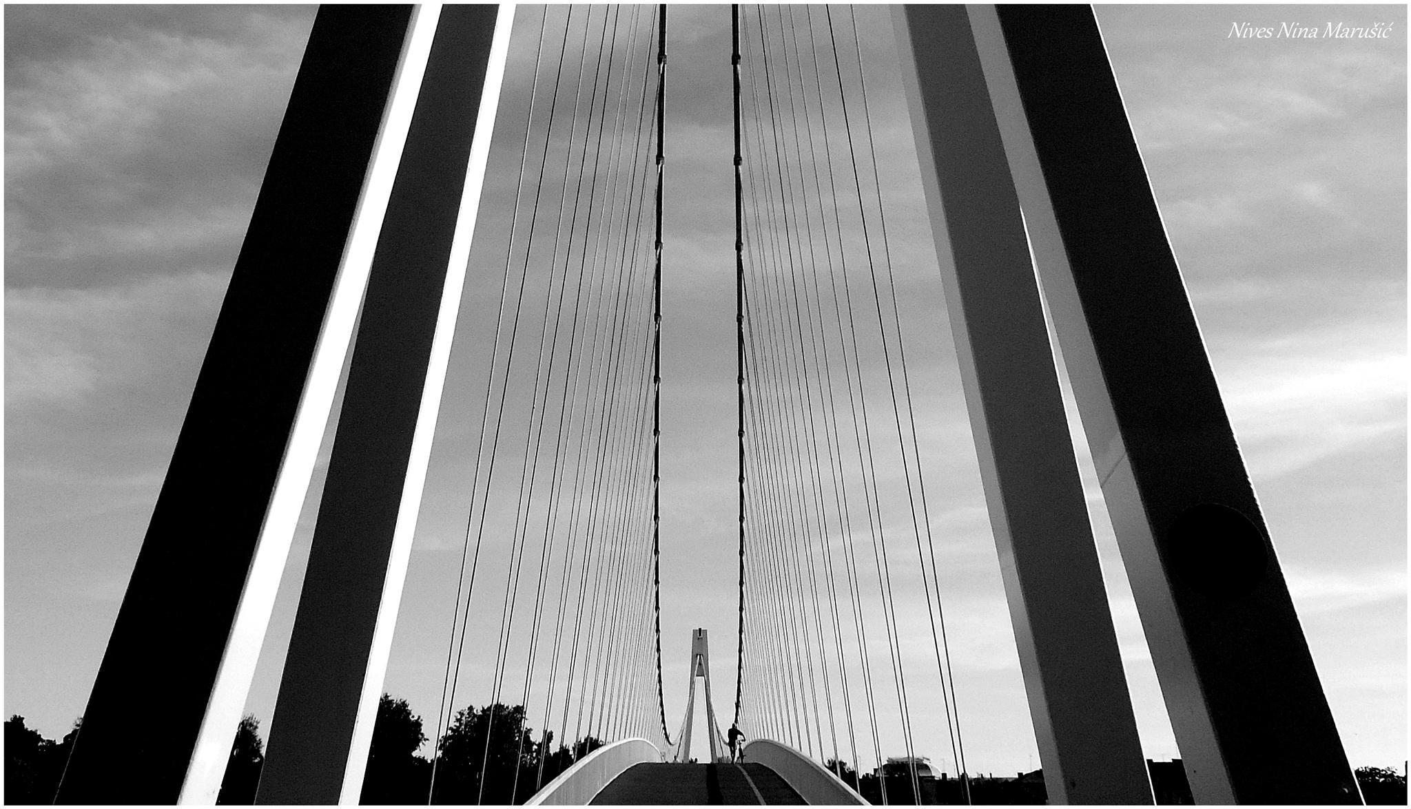bridge 1 by nives.n.marusic