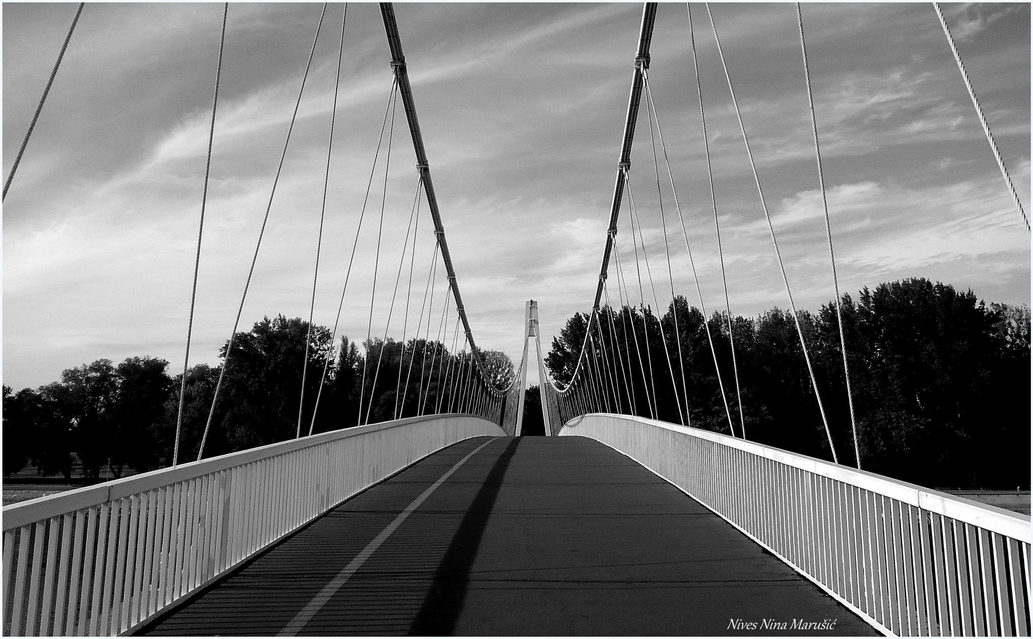 bridge 2 by nives.n.marusic